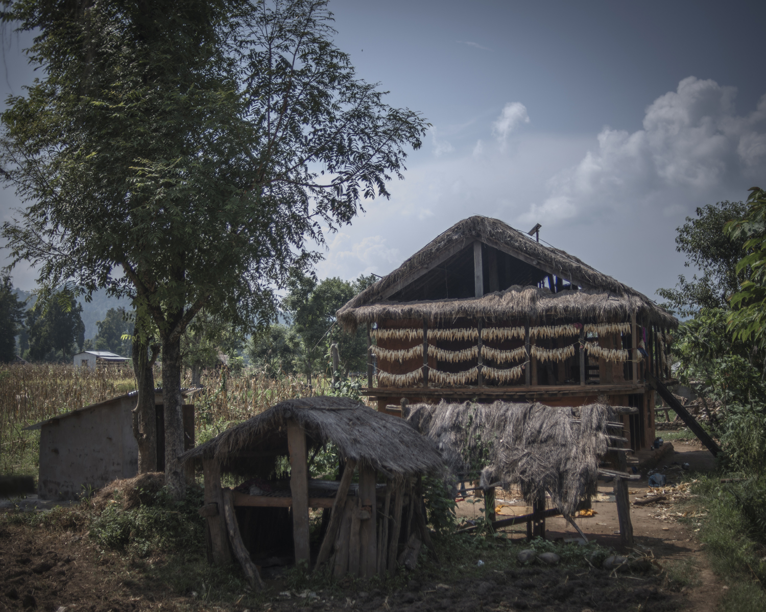 A shed in Narsi village.