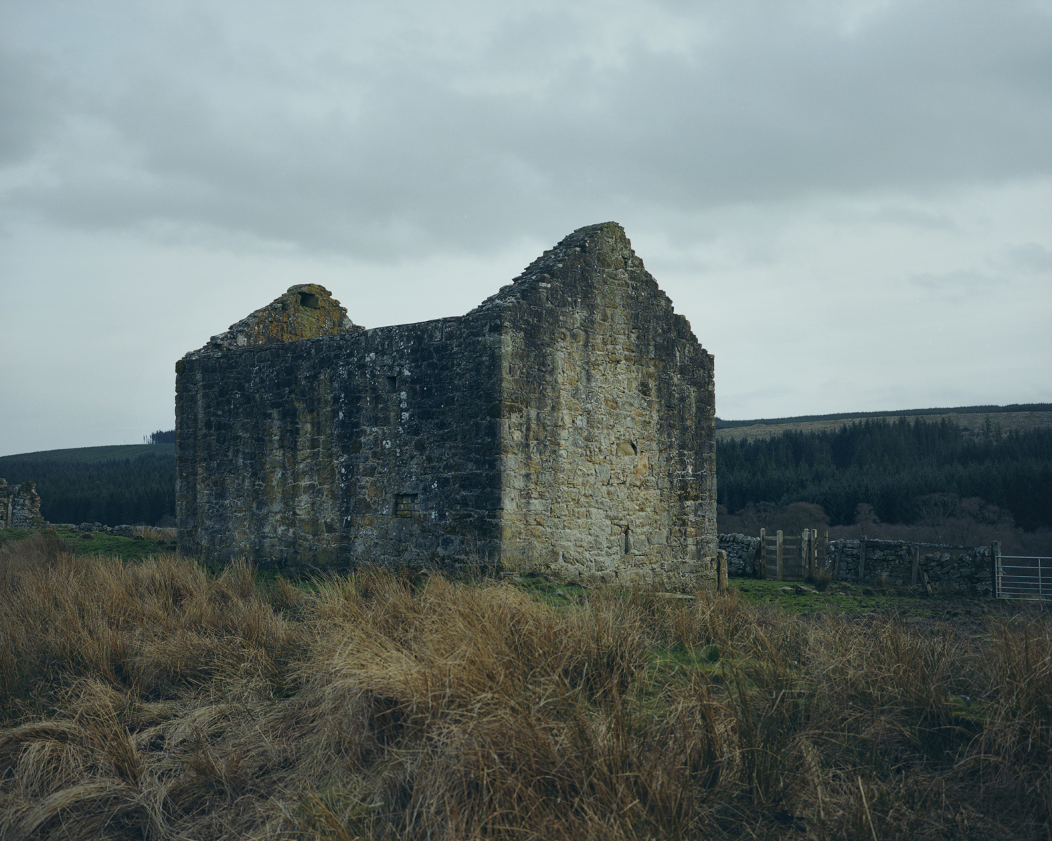 The Black Middens Bastle House. A 16th century fortified farmhouse built to defend and protect farmers and their livestock, Tarset Valley in Northumberland.