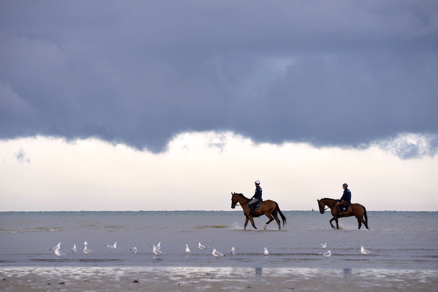 Aug. 21, 2014. Pascal Leroy (L) riding his horse Minos de Petra and Maxime Livio (R) riding Qalao des Mers take part in a training session of the eventing French national team at the Saint-Martin-de-Brehal beach prior to the start of the 2014 Alltech FEI World Equestrian Games in Normandy.
