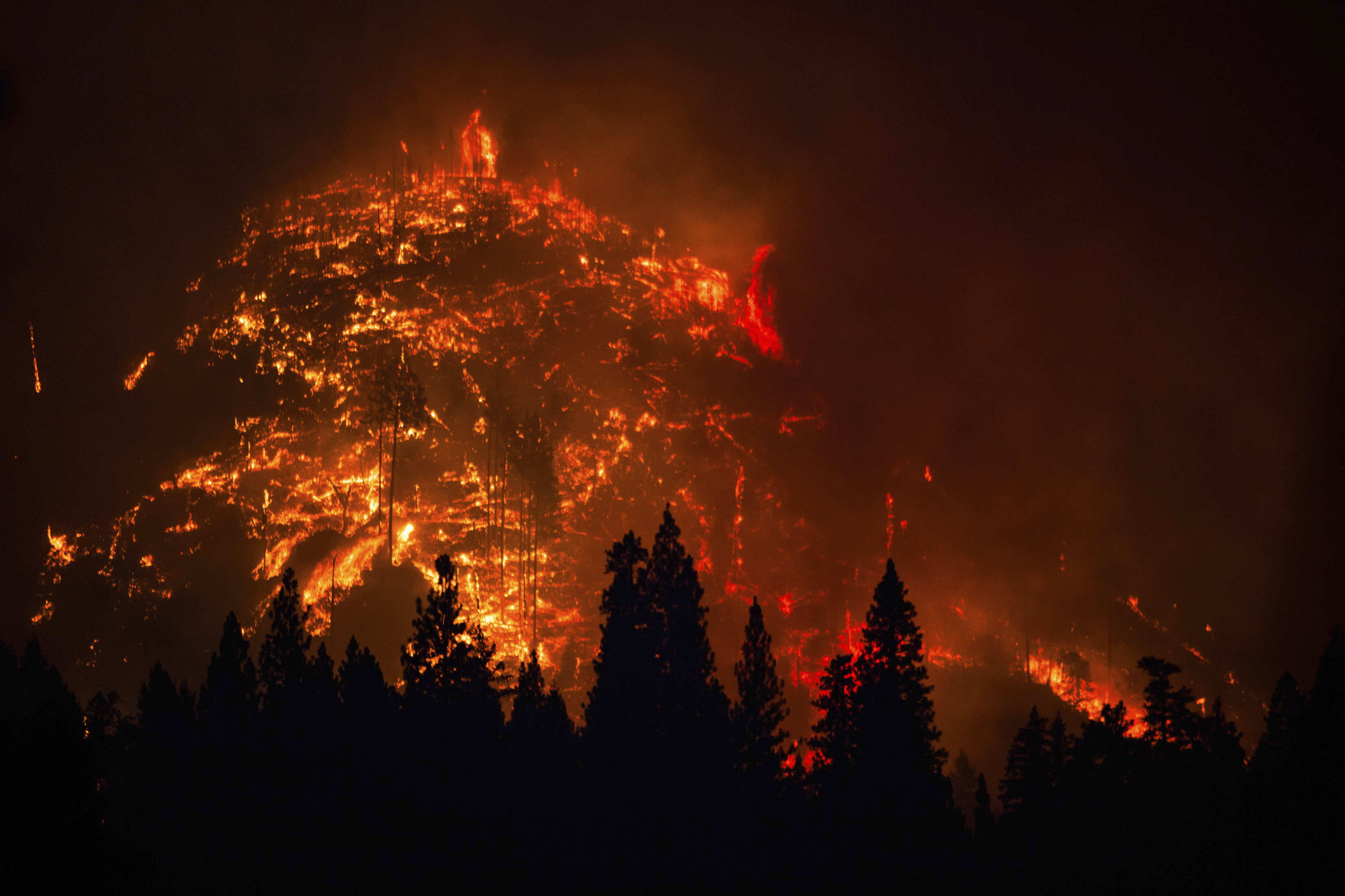 The Rim Fire burns near Yosemite National Park in Buck Meadows, Calif. on Aug. 24, 2013.