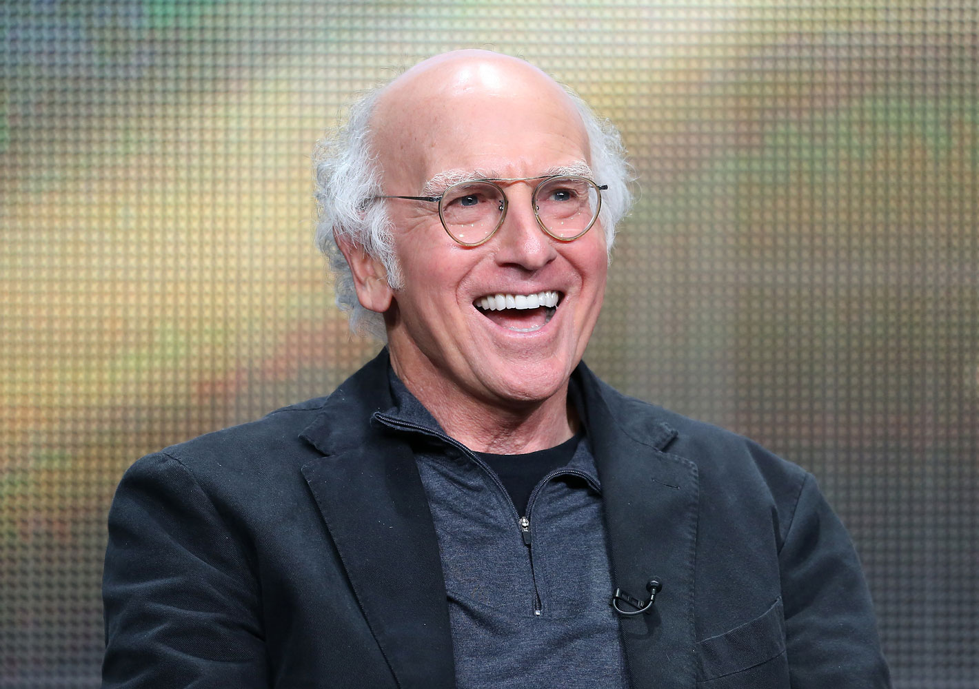 Larry David onstage at the 2013 Summer Television Critics Association tour on July 25, 2013 in Beverly Hills.