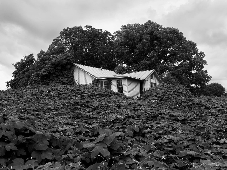 An abandoned house near Gainesville, Georgia.
