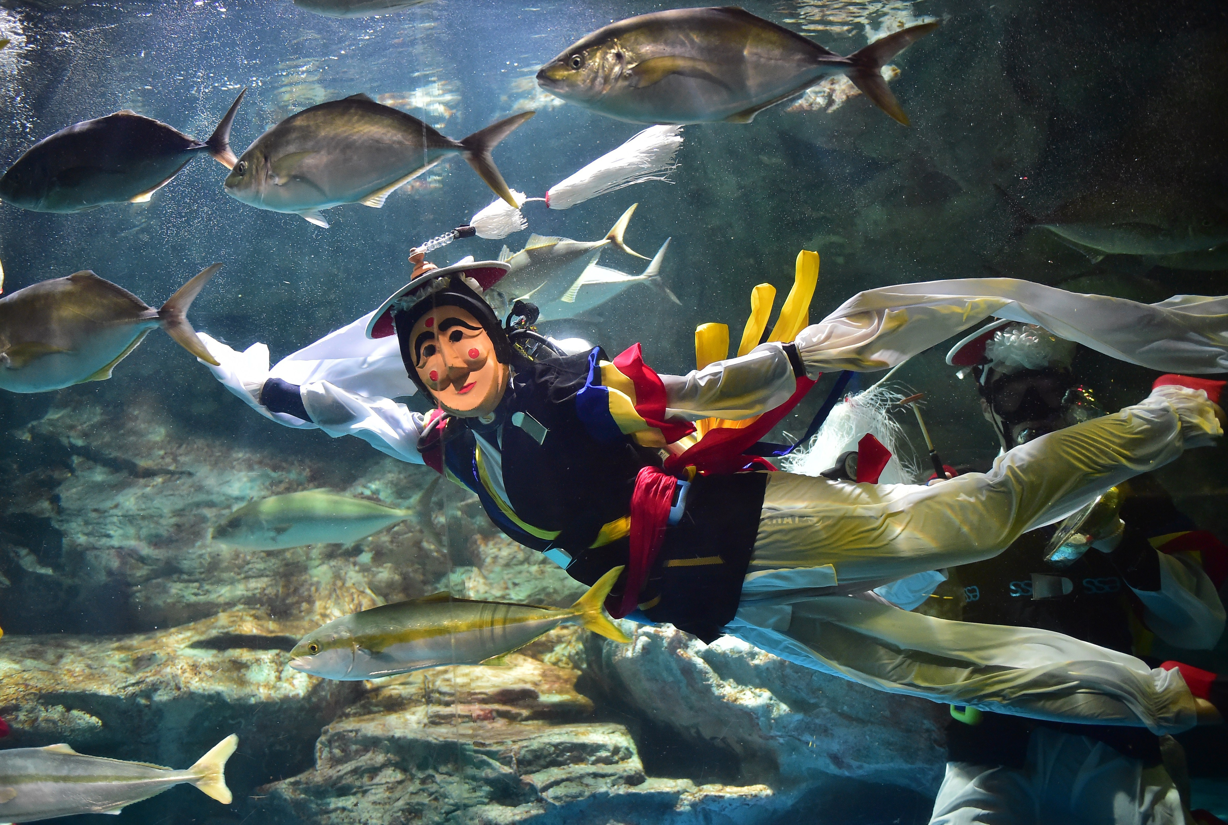 A South Korean diver performs a traditional masked dance to promote an event to celebrate the upcoming Chuseok holiday at an aquarium in Seoul on Sept.1, 2014.