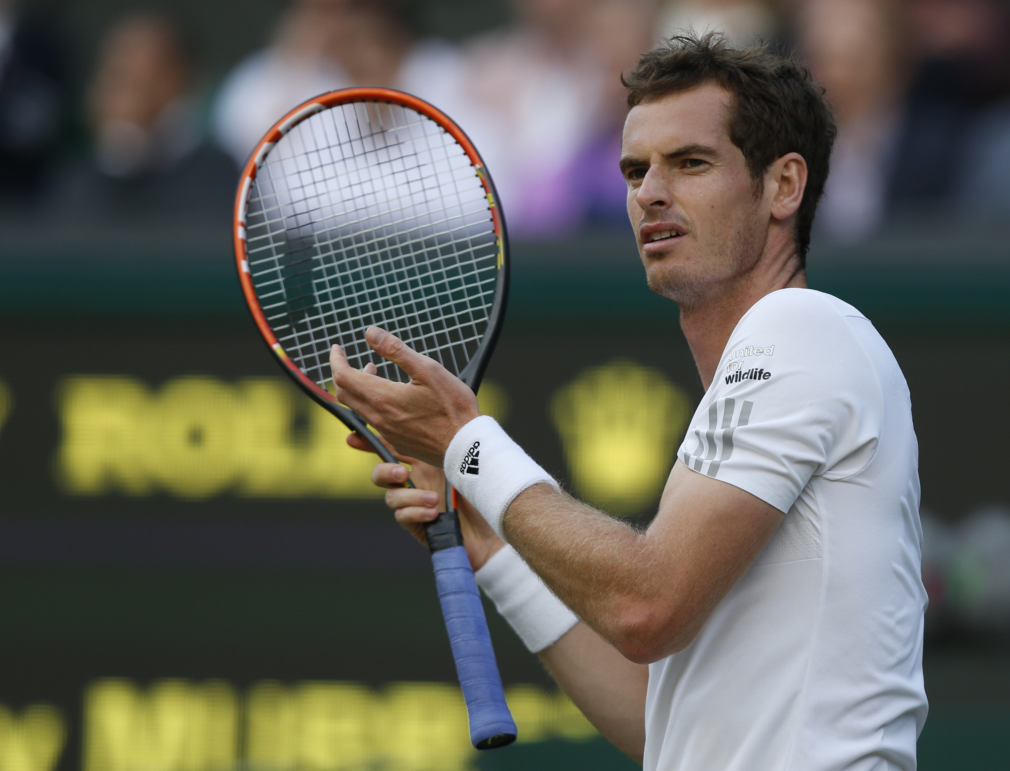 In this Friday, June 27, 2014, file photo, Andy Murray of Britain gestures between points as he plays Roberto Bautista Agut of Spain in their men's singles match at the All England Lawn Tennis Championships in Wimbledon.