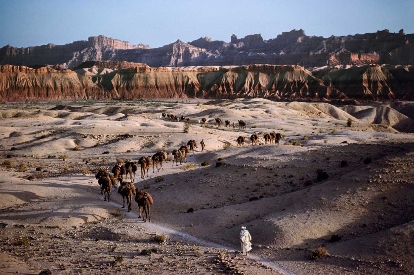 Camel caravan, Southern Afghanistan