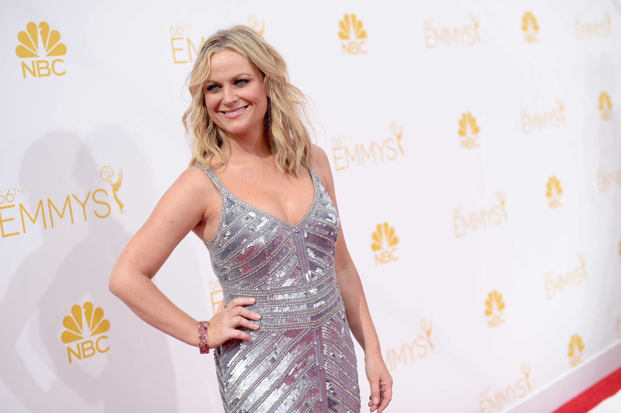 "<strong>Amy Poehler</strong> says she's confused by how many women deny that they're feminists, ""but then they go on to explain what they support and live by — it's feminism exactly,"" she told Elle magazine in January.  ""That's like someone being like, 'I don't really believe in cars, but I drive one every day and I love that it gets me places and makes life so much easier and faster and I don't know what I would do without it.'"""