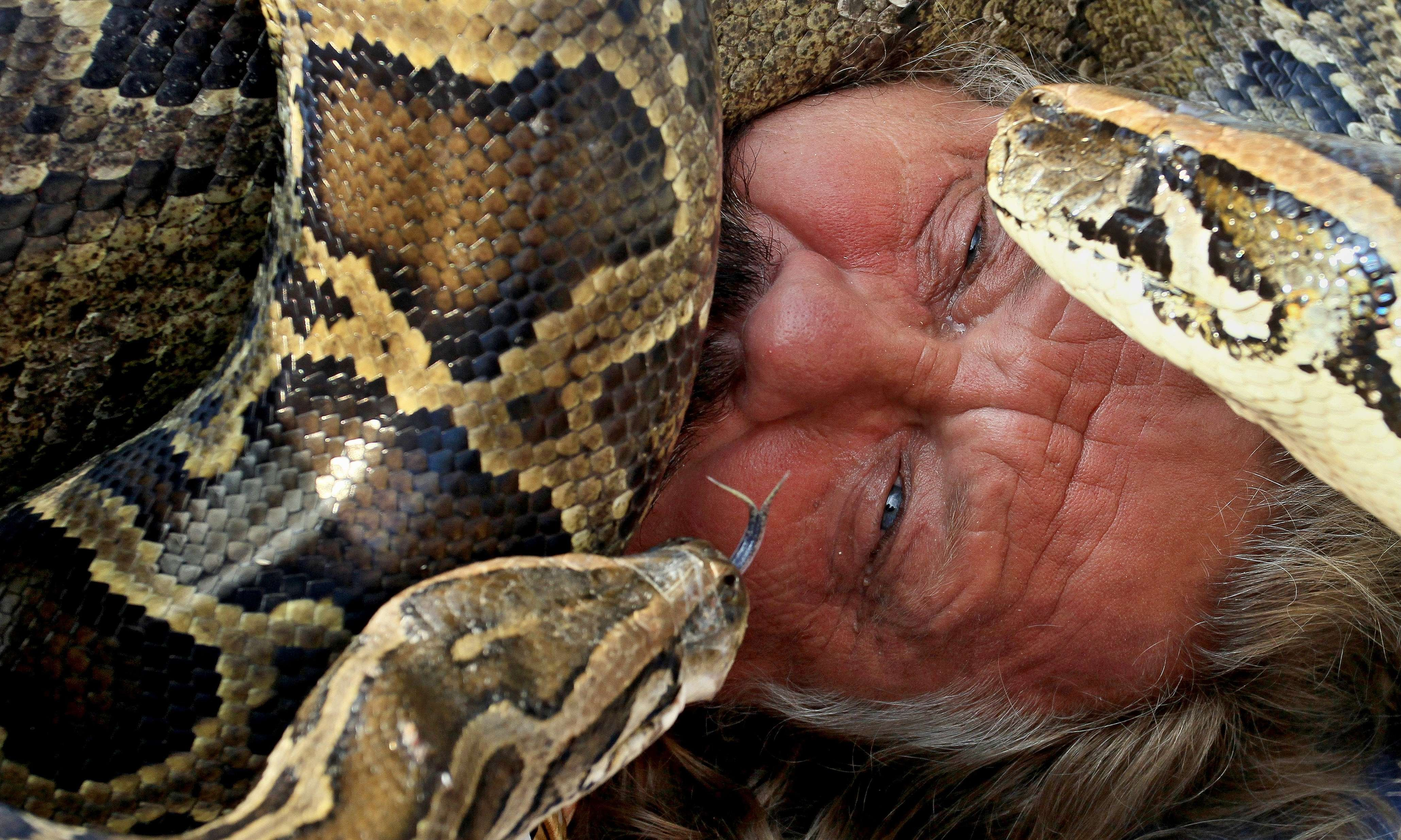 Circus director Jaromir Joo is seen behind two snakes during a record attempt on Sept. 9, 2014 on St James Square in Brno, Czech Republic. Three boa constrictors and two pythons, weighing more than 500 kilograms, were laid on Joo.