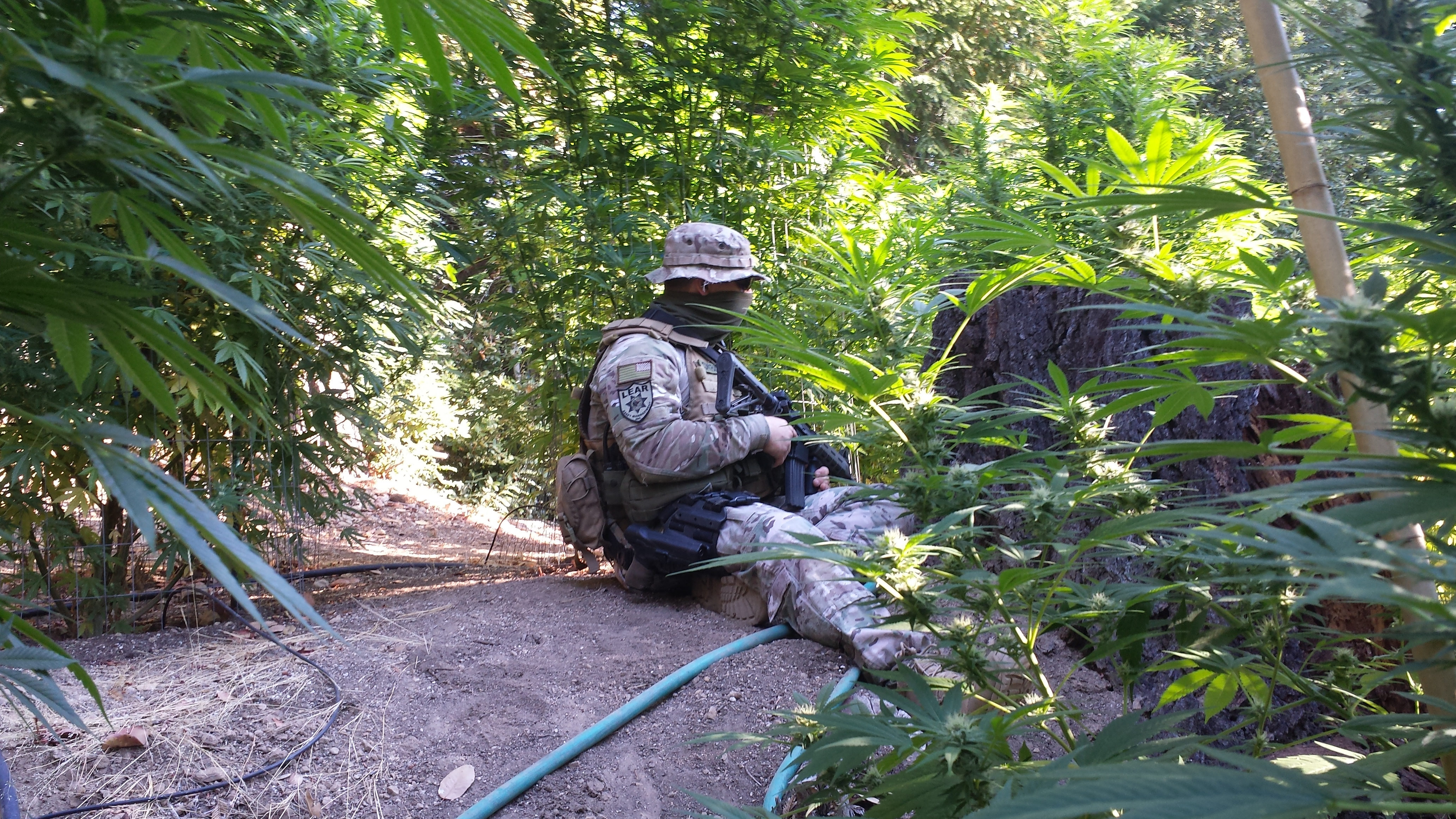 Lear personnel during a raid on an illegal trespassing marijuana operation.
