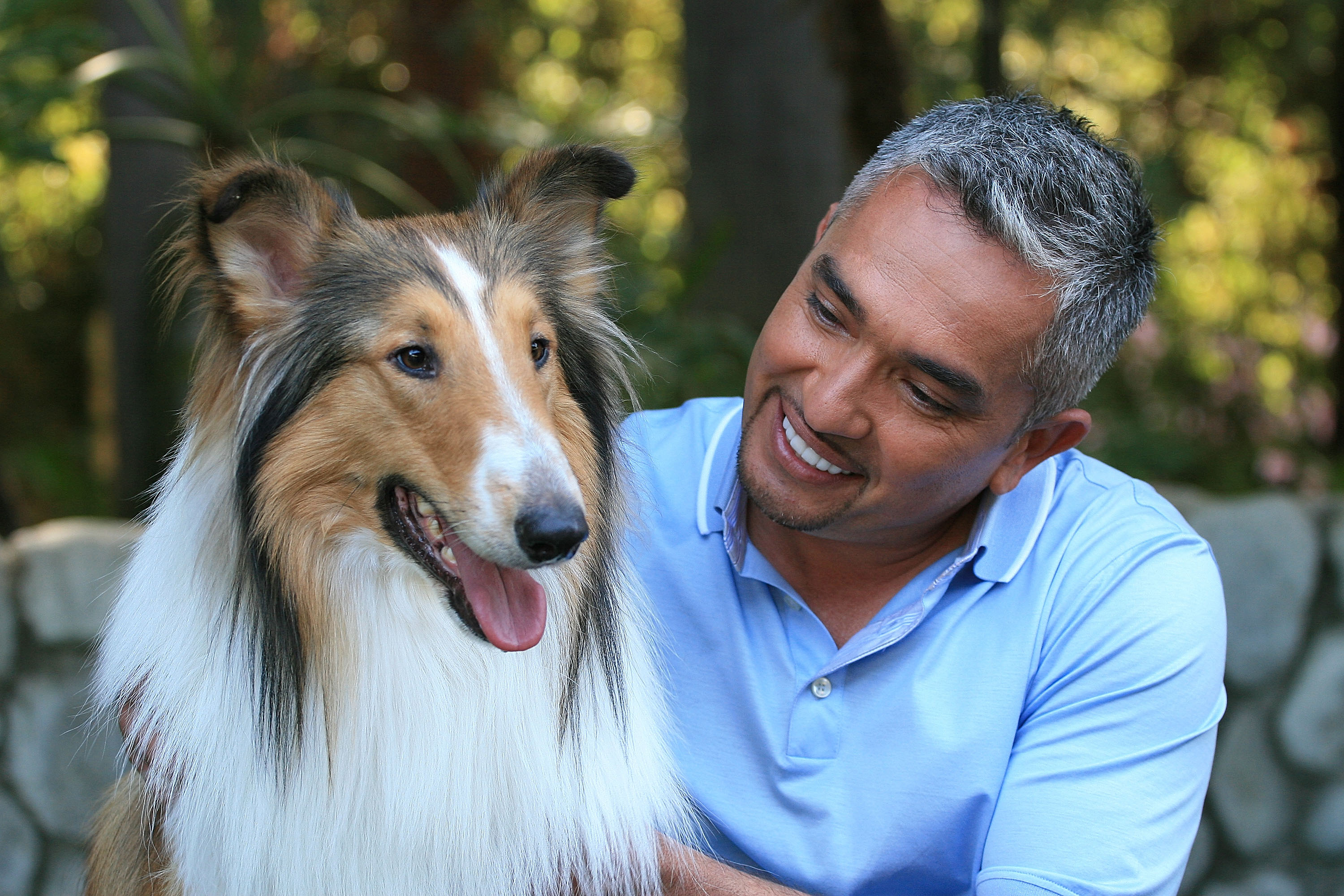 Dog whisperer Cesar Millan and Lassie at the taping of the 100th episode of National Geographic Channel's   Dog Whisperer  at Pickwick Gardens in Burbank, Calif. on March 30, 2008.