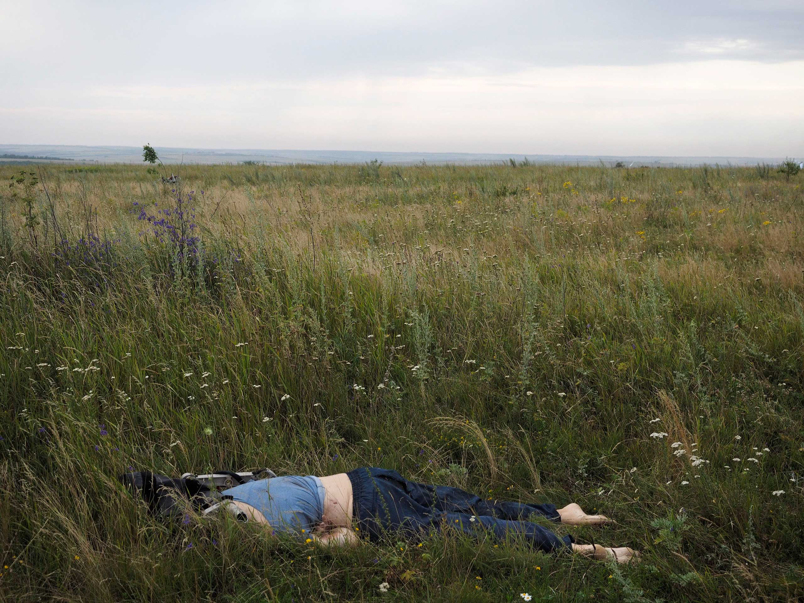 The corpse of a passenger aboard the Malaysia Airlines flight that was shot down over Ukraine, Torez, Ukraine, July 17, 2014.