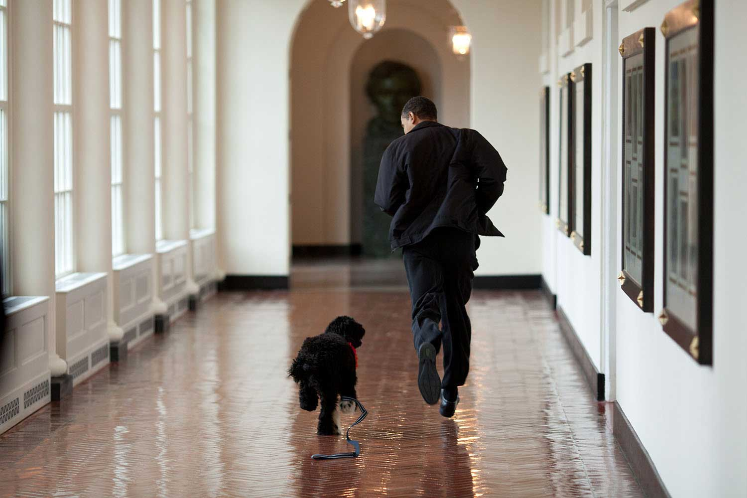 """The Obama family was introduced to a prospective family dog at a secret greet on March 15, 2009. After spending about an hour with the dog, the family decided he was the one. Here, the dog ran alongside the President in an East Wing hallway. The dog returned to his trainer, while the Obamas embarked on their first international trip. I had to keep these photos secret until a few weeks later, when the dog was brought 'home' to the White House and introduced to the world as Bo."""