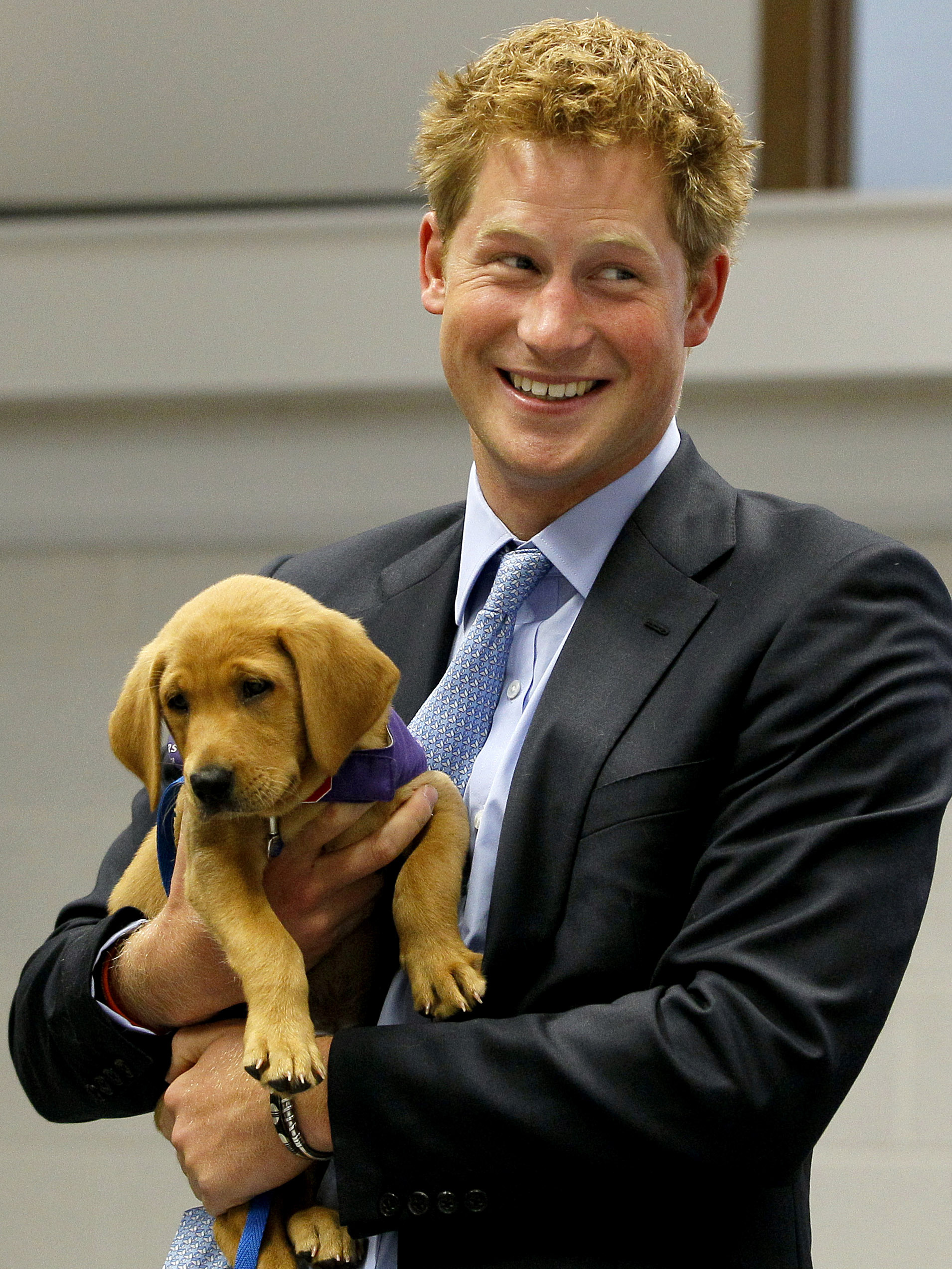 Britain's Prince Harry holds Veyron, an eight-week-old puppy, during a visit to the charity Canine Partners Training Centre, in Midhurst, England on July 13, 2010.