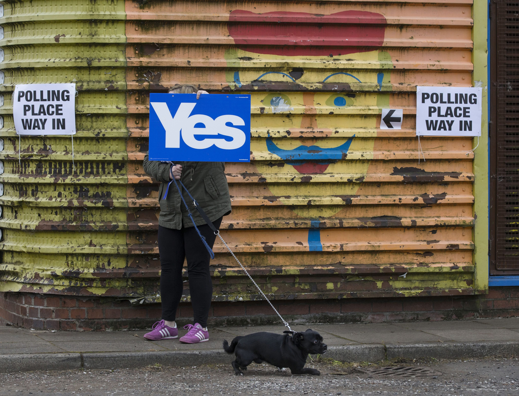 A voter, with clear voting intentions, holds up a Yes placard while heading to a local polling station to vote in the Scottish Independence Referendum at Ruchazie Community Centre, Ruchazie, Glasgow, Scotland, Sept/ 18, 2014.