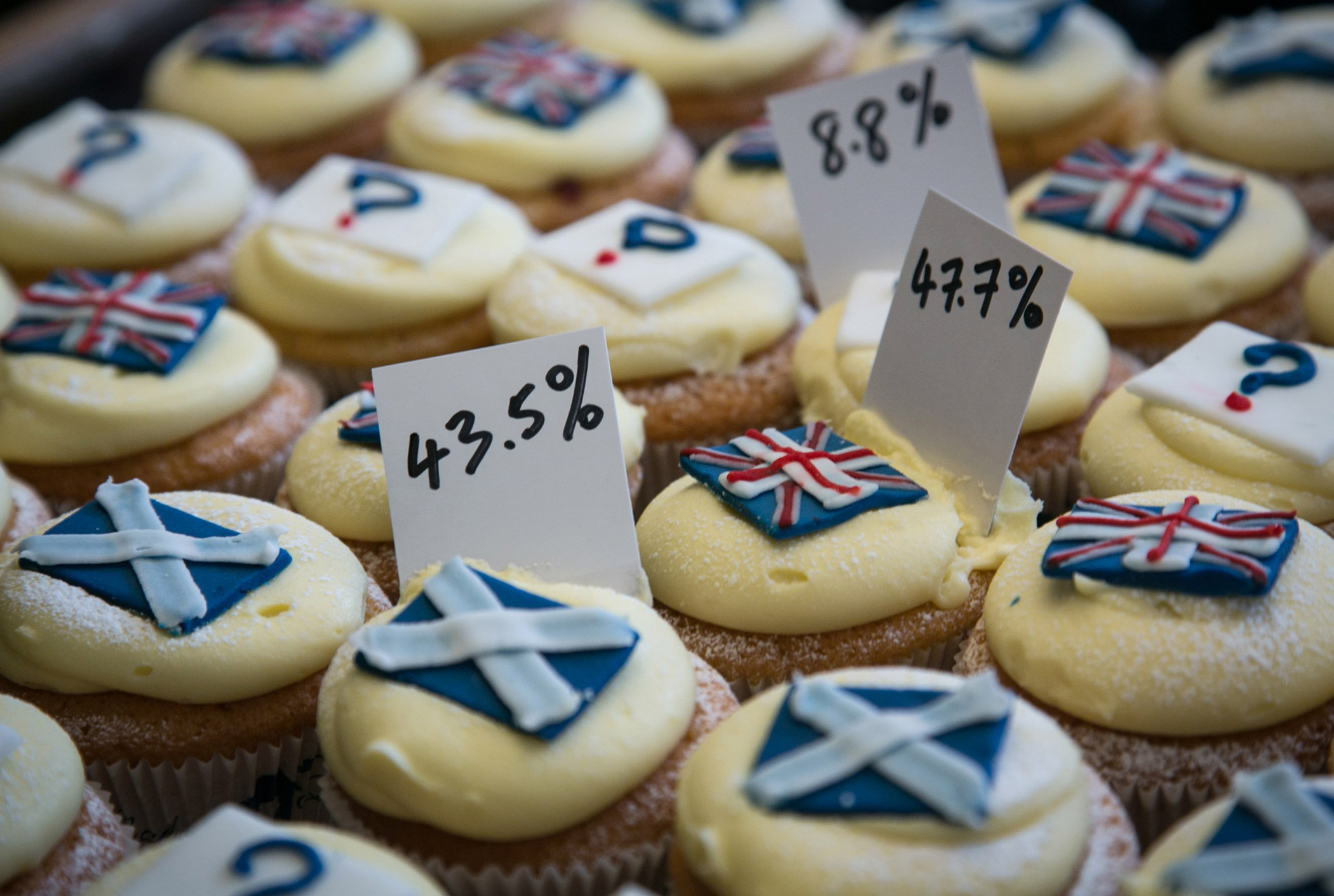 Cuckoo's Bakery reveal the result of the cupcakes referendum that the bakery has been holding since March 7 by selling Yes, No and undecided cupcakes at Cuckoo's Bakery in Dundas Street, on Sept. 17, 2014 in Edinburgh, Scotland.