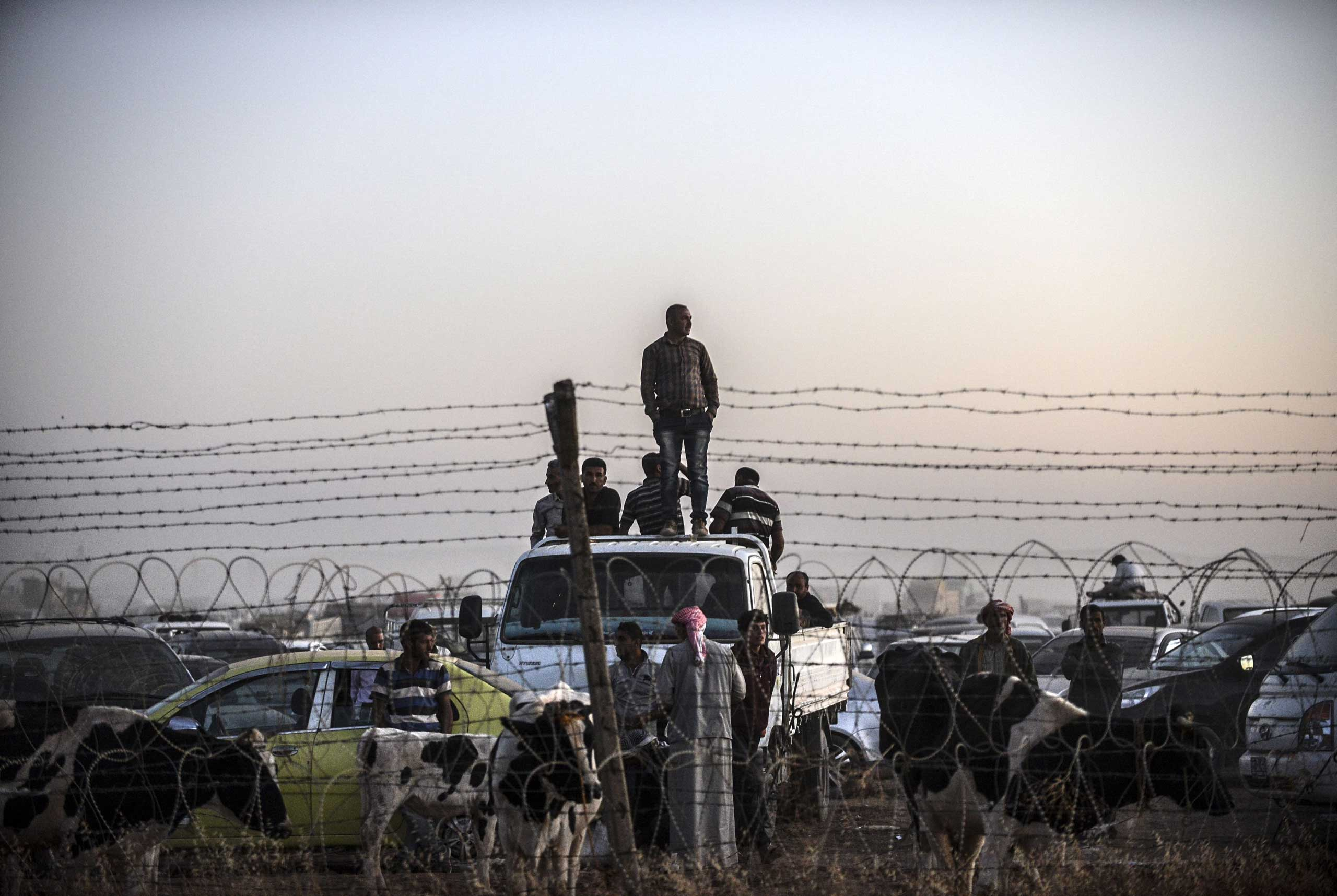 Syrian Kurds wait next to their animals as they stand behind a fence on the Syrian border in the southeastern town of Suruc in Sanliurfa province, on Sept. 21, 2014.
