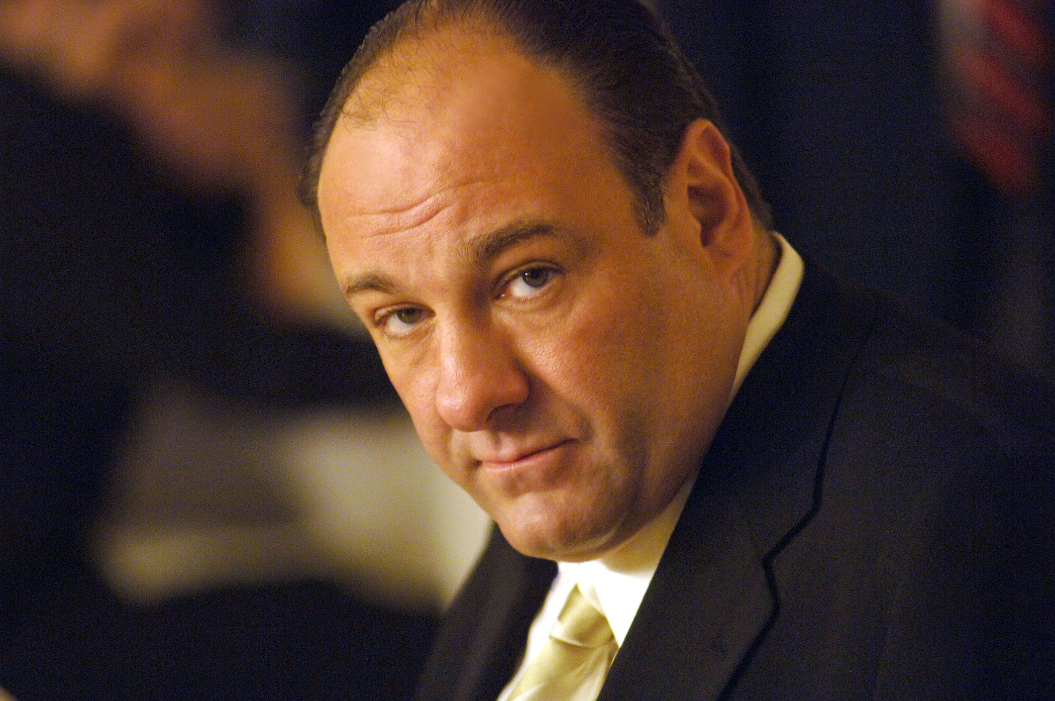 In perhaps his most famous role, Gandolfini portrayed mob boss Tony Soprano in HBO's The Sopranos.