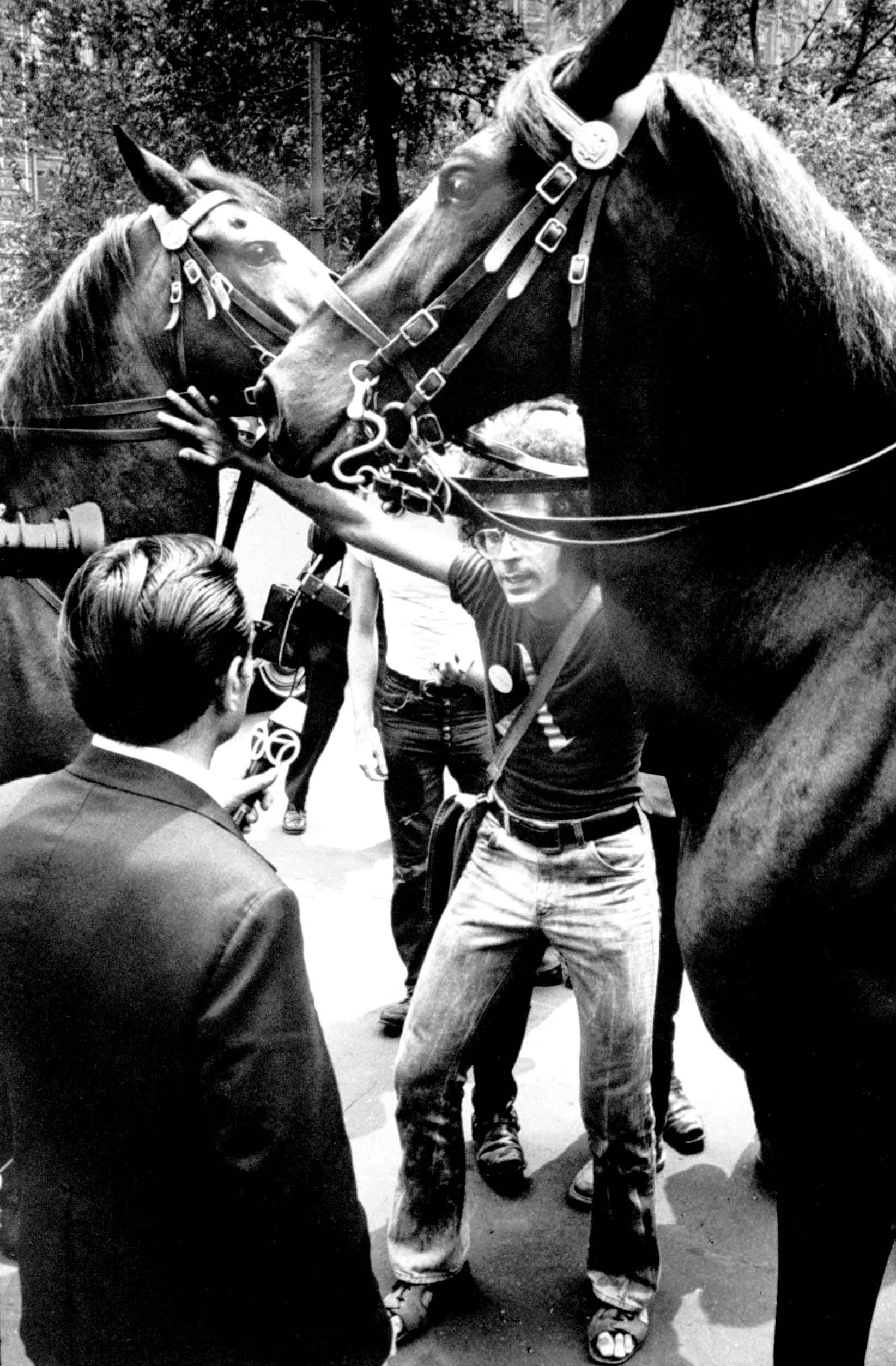 <b>Caption from LIFE</b> A homosexual activist steps between a pair of police horses to be interviewed during a New York demonstration. Militants often charge police brutality and welcome arrest for the sake of publicity. They also encourage press coverage of their protest actions.