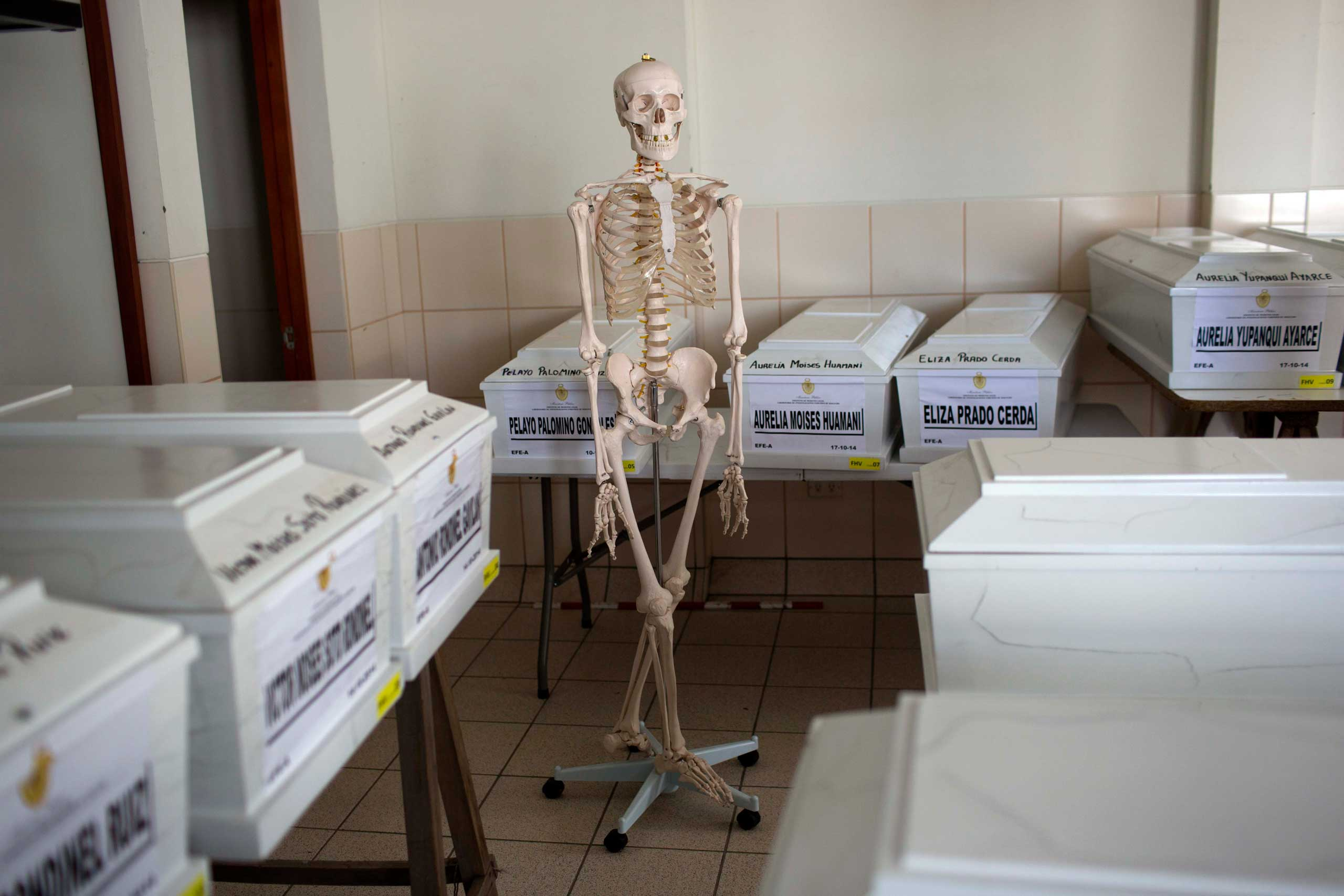 A human skeletal anatomy model hangs on a stand in a forensic laboratory surrounded by coffins containing the exhumed remains of people slain three decades ago during the country's dirty war, in Huamanga, Peru,  Oct. 26, 2014.