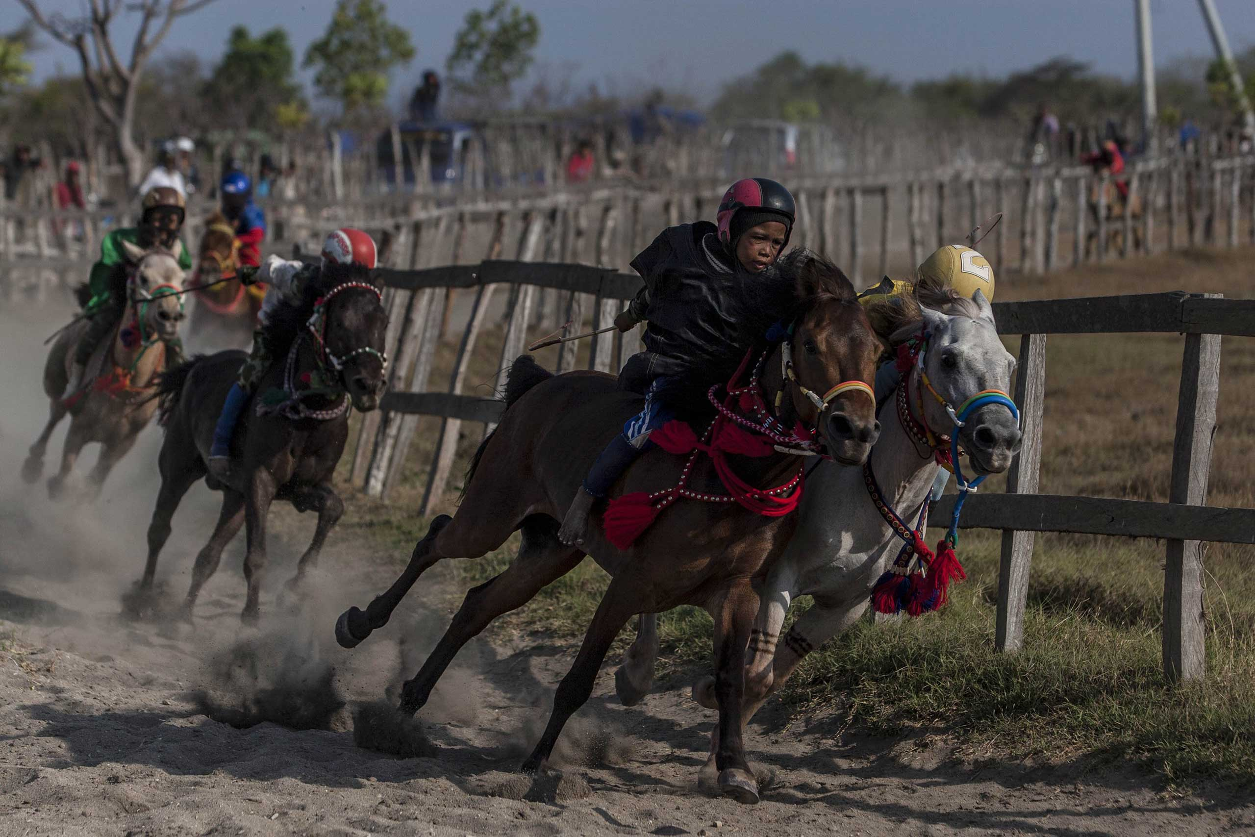 Sept. 27, 2014.  Child jockeys compete during the traditional horse races as part of Moyo festival in Sumbawa Island, West Nusa Tenggara, Indonesia. The racing tradition involves child jockeys who ride bareback.