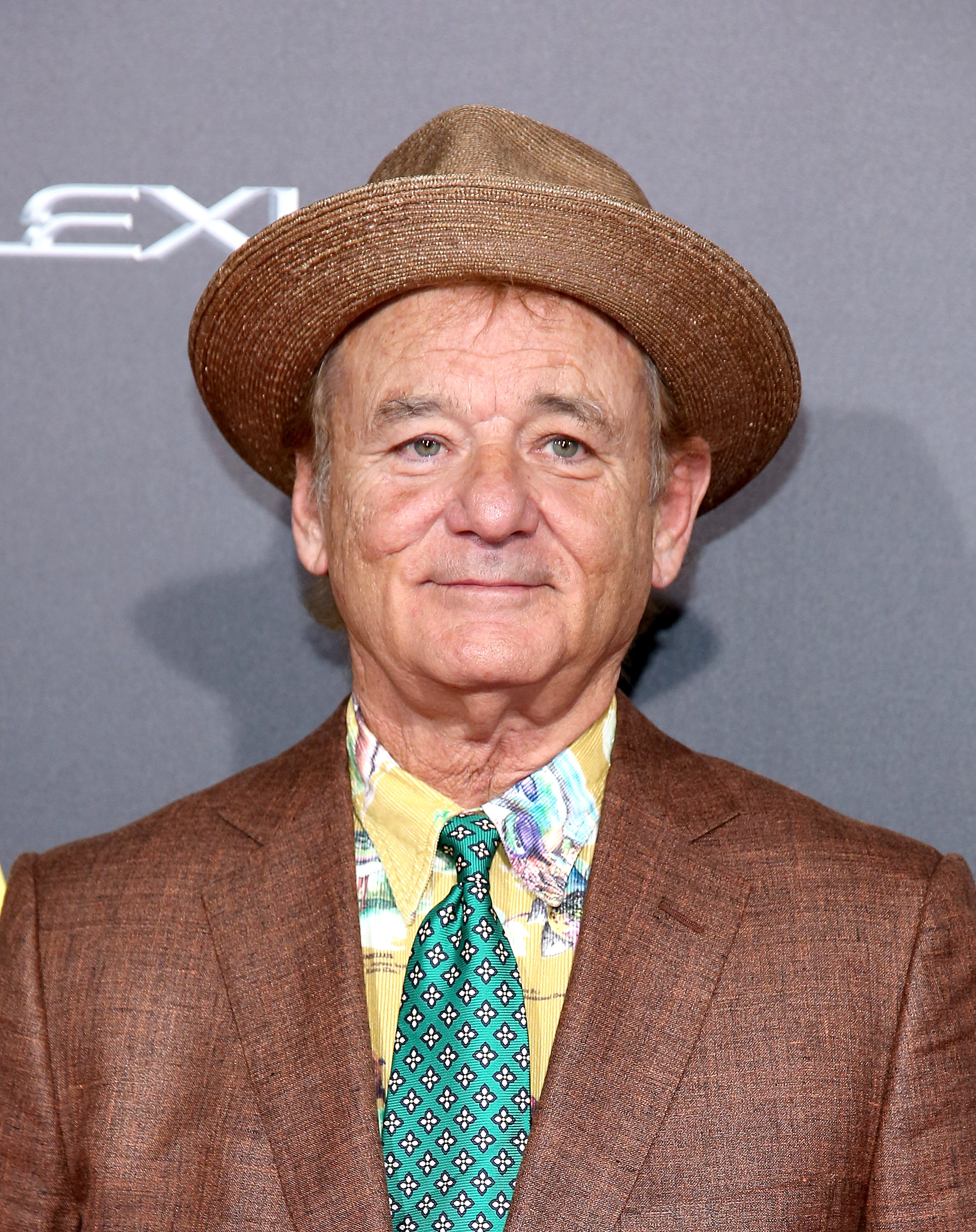 Actor Bill Murray attends the premiere of ST. VINCENT
