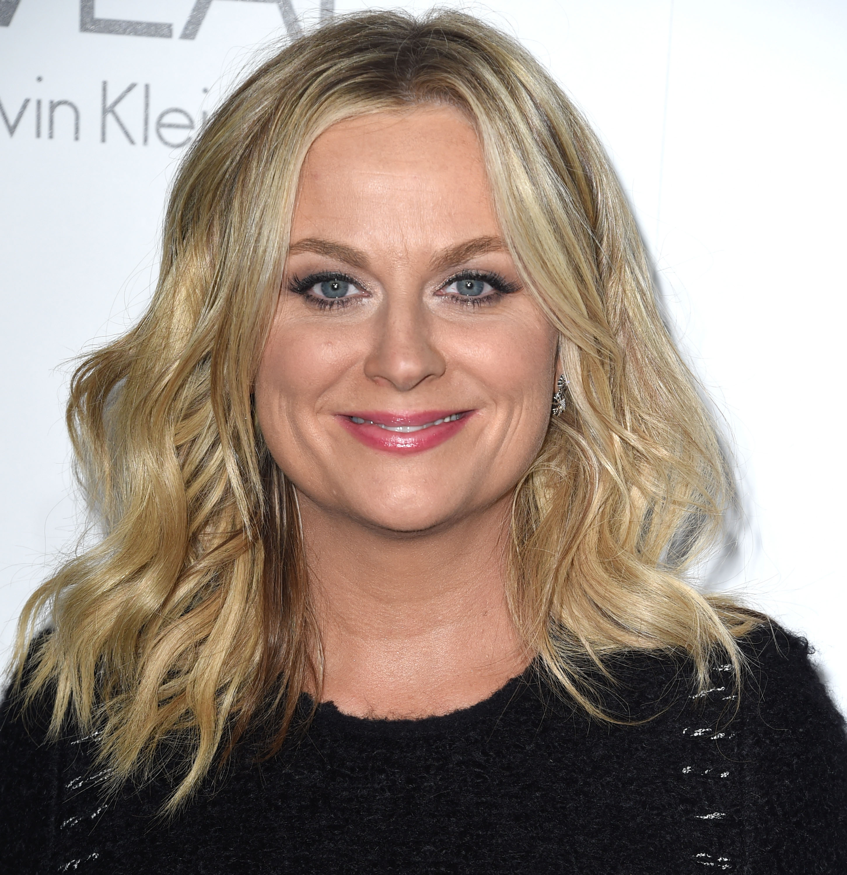 Amy Poehler arrives at the 2014 ELLE Women In Hollywood Awards at Four Seasons Hotel Los Angeles at Beverly Hills on Oct. 20, 2014 in Beverly Hills.