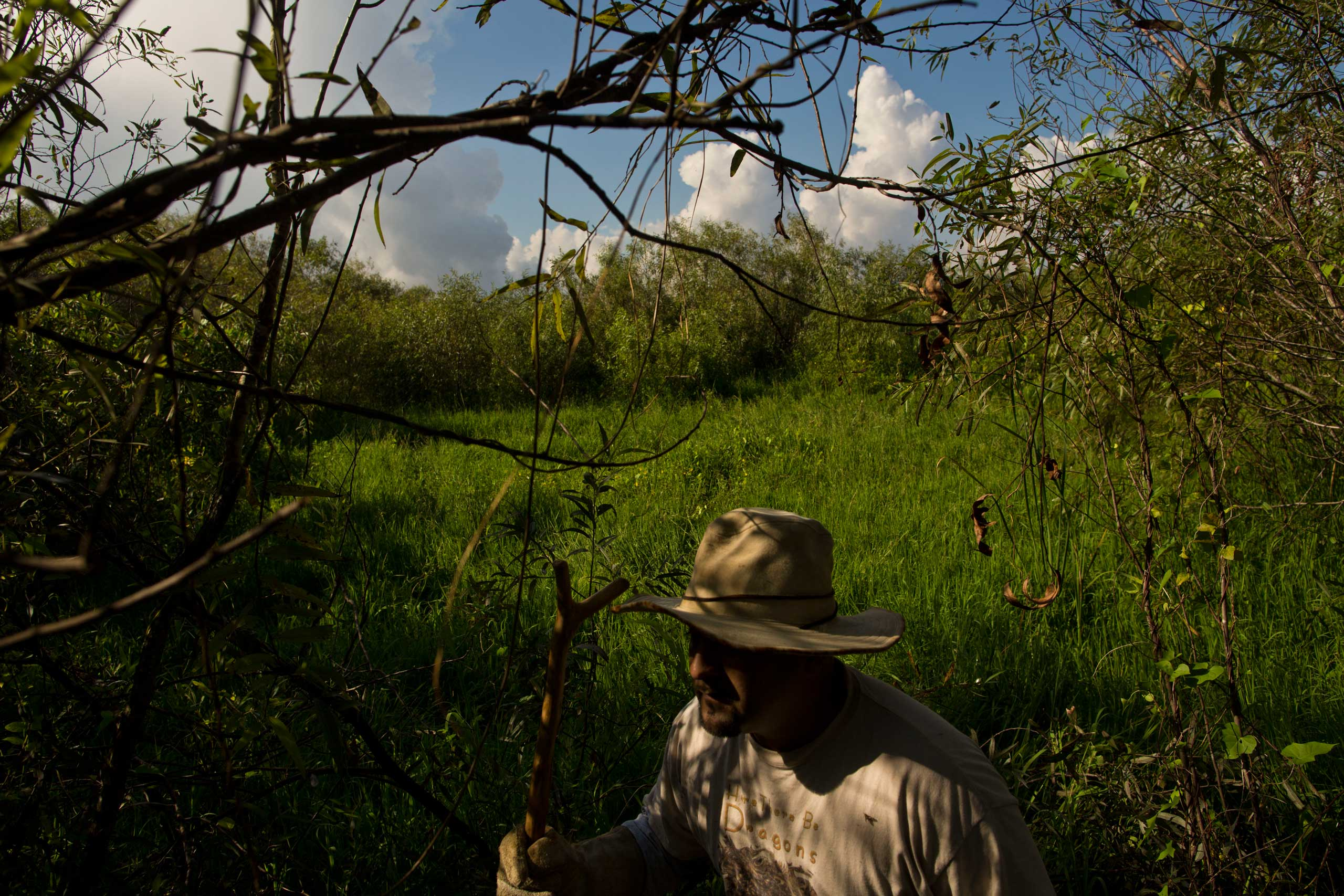 "Jorge Martinez, a veteran and volunteer member of the ""Swamp Apes"", patrols through Florida's Everglades National Park searching for invasive pythons in the Shark River Slough area of the park on Saturday Oct. 4, 2014."