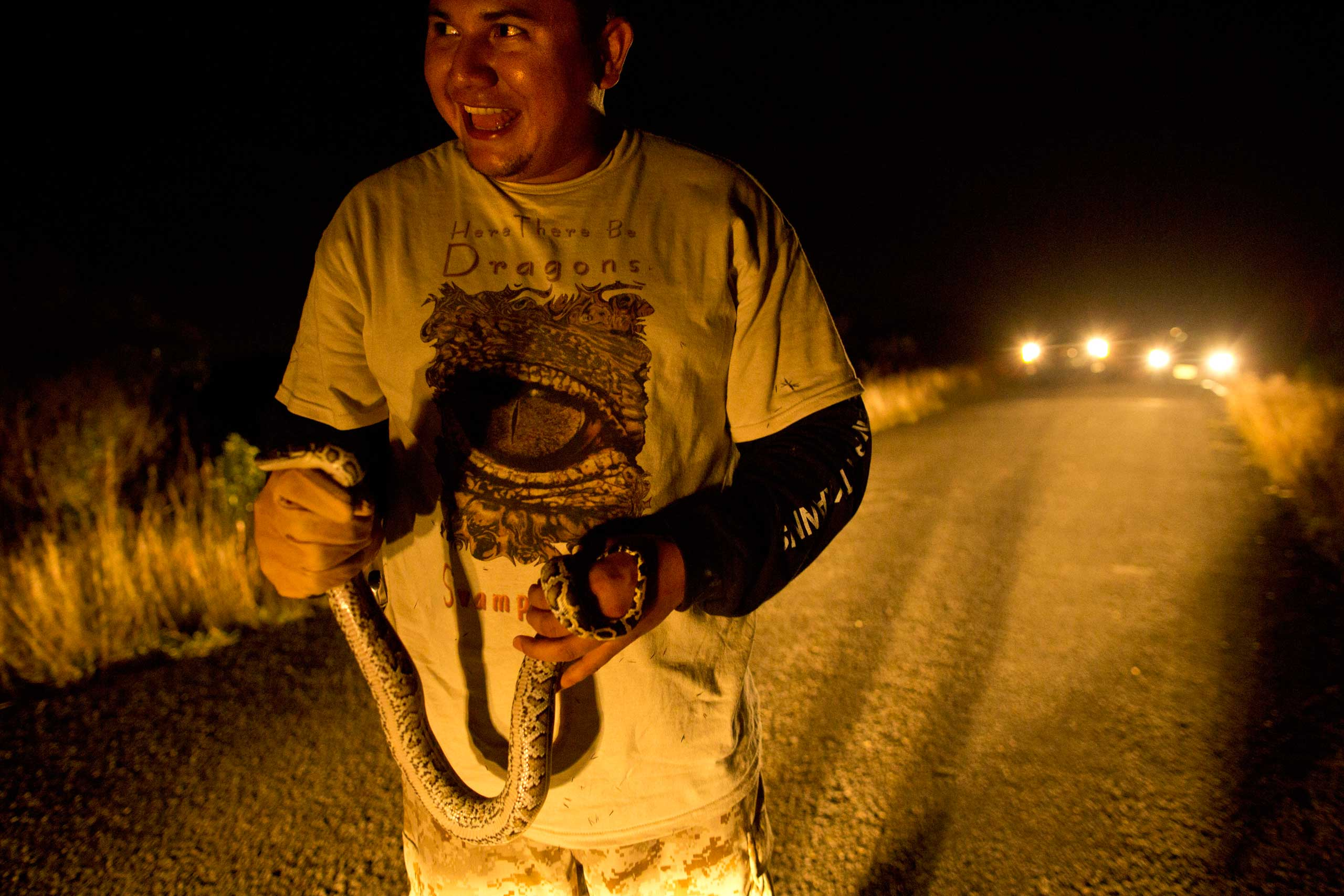 "Veteran and volunteer member of the ""Swamp Apes"", Jose Rodriguez, holds a young python in his hands after capturing it on the road during a patrol through the Chekika area of Florida's Everglades National Park on Saturday Oct. 4, 2014. It was his first python capture since joining the group."