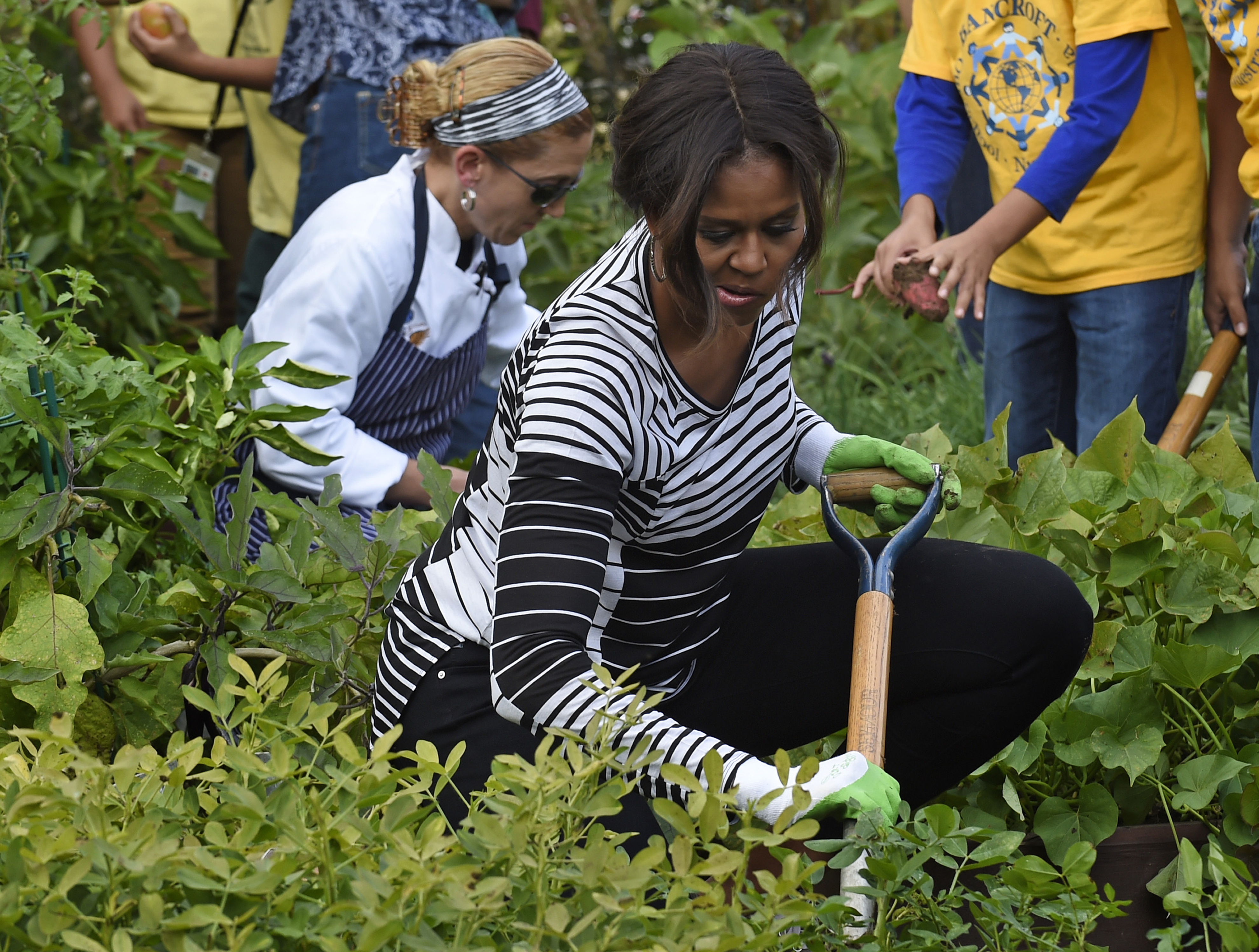 First Lady Michelle Obama is joined by school children as they harvest peanuts in the annual fall harvest at the White House on Oct. 14, 2014