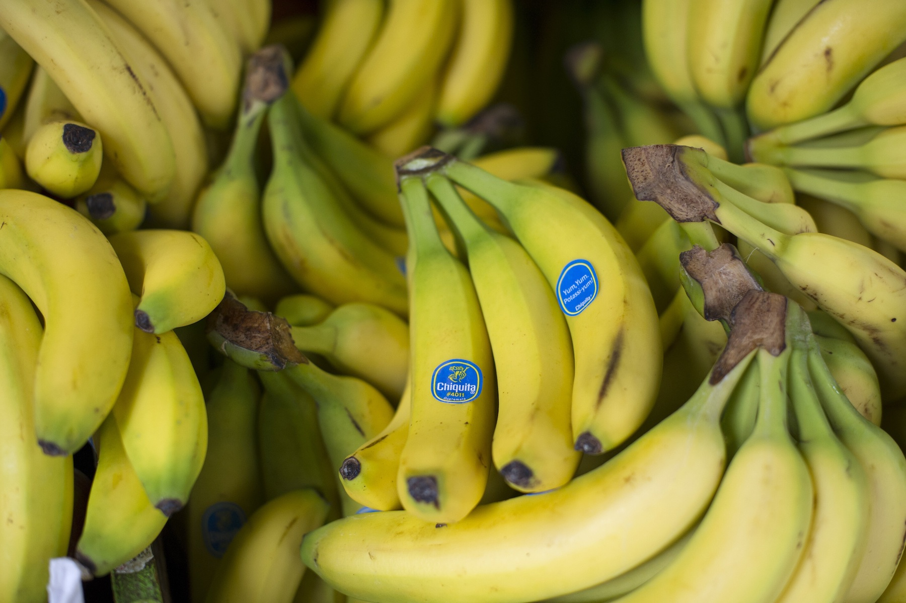 Chiquita Brands International Inc. bananas are displayed at a store in San Francisco on Feb. 19, 2013.