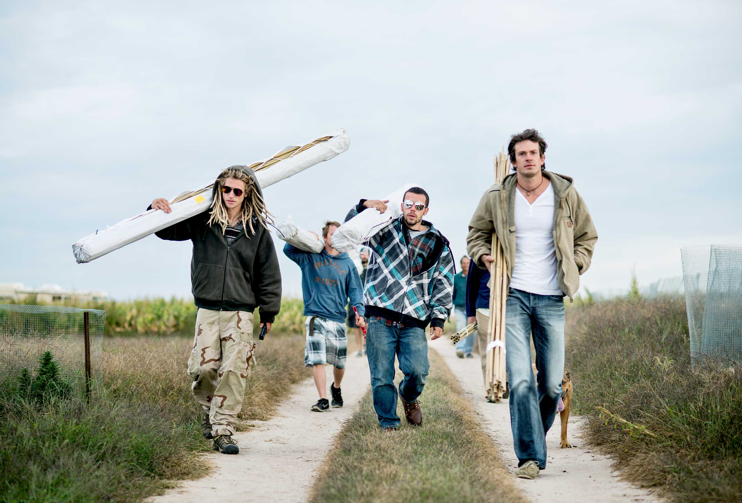 From left: Zachary Sobol, Michael Atchley, and Jared Stanley walk to the farm to prepare for harvest of Charlotte's Web near Wray, Colo. on Sept. 22, 2014.