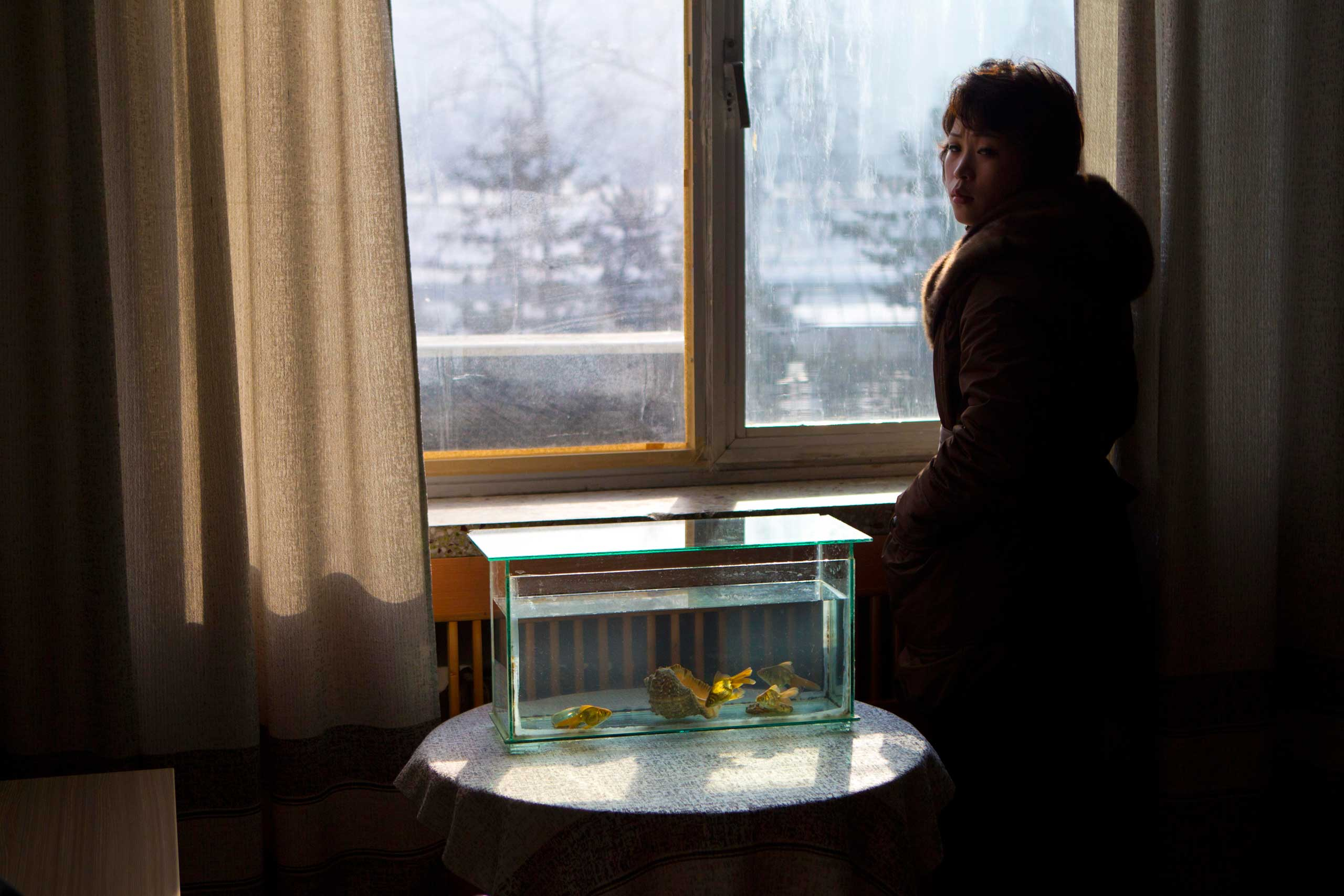 Jan. 16, 2012. Light shines through a window on to a tank filled with goldfish inside an office at the Korean Central News Agency building in Pyongyang.