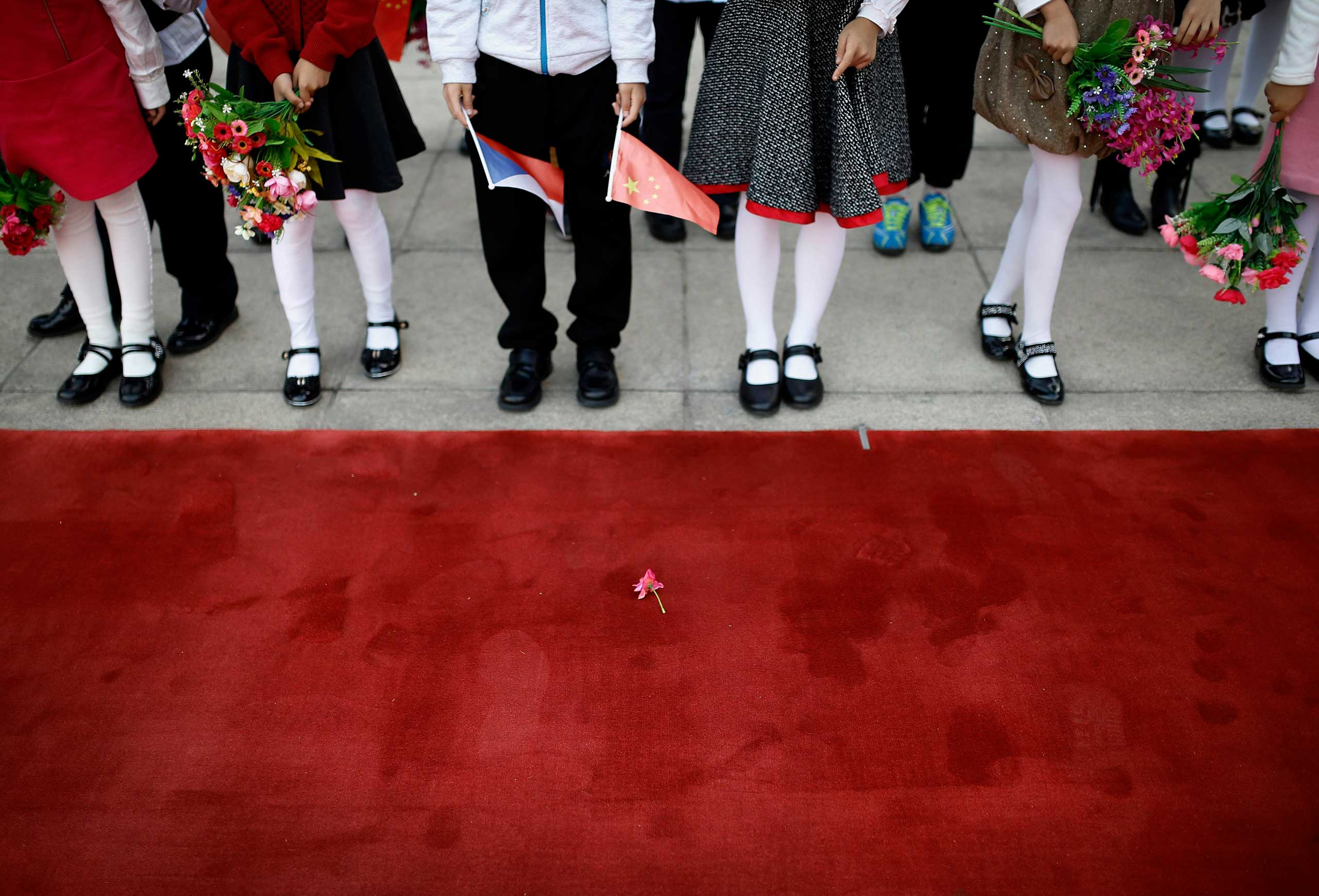 Oct. 27, 2014. A flower from bouquet held by children is seen on the red carpet before the welcome ceremony for visiting Czech Republic's President Milos Zeman outside the Great Hall of the People in Beijing.