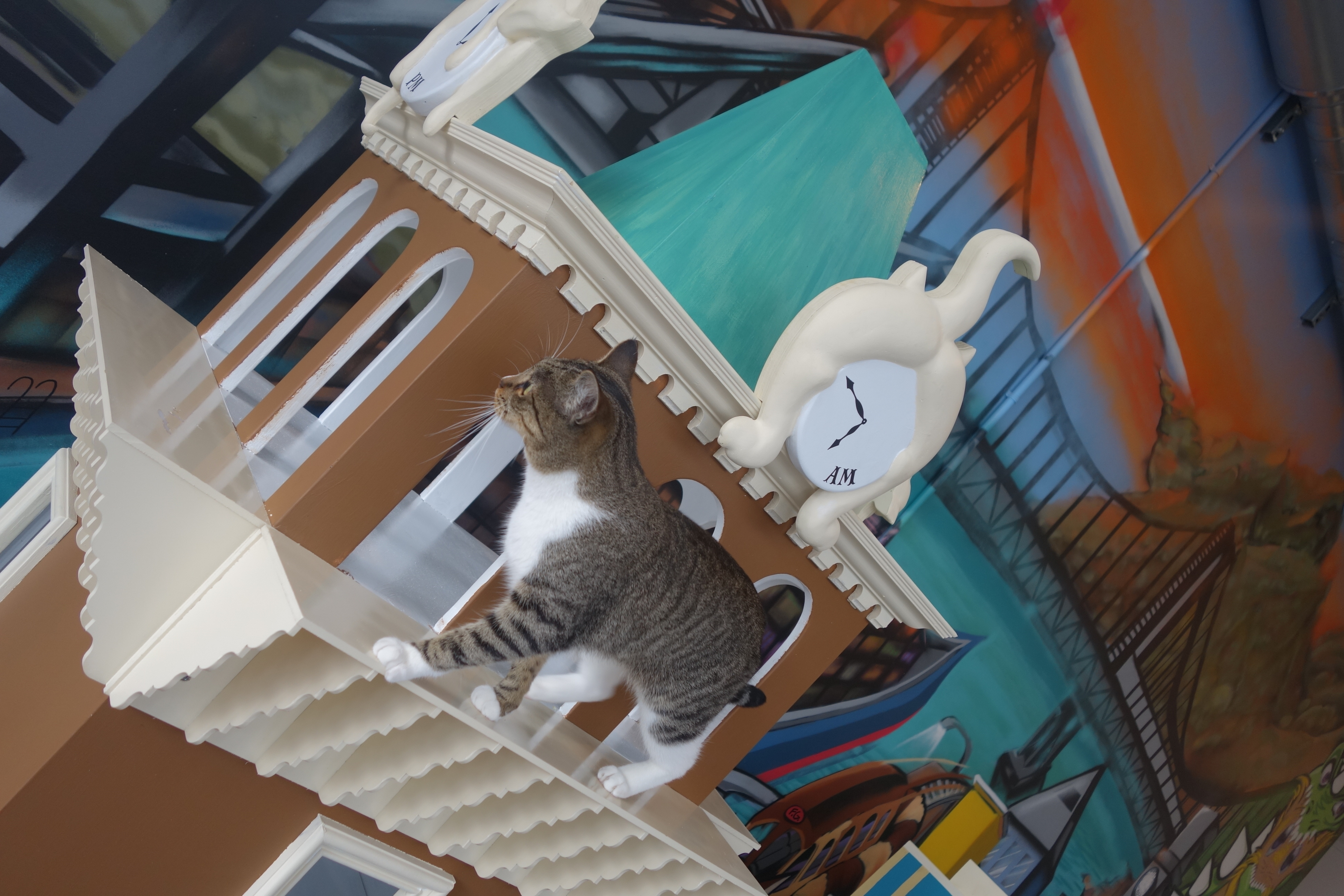 A cat walks atop a reproduction of Oakland's Tribune Tower at the Cat Town Cafe in Oakland on Oct. 25, 2014.
