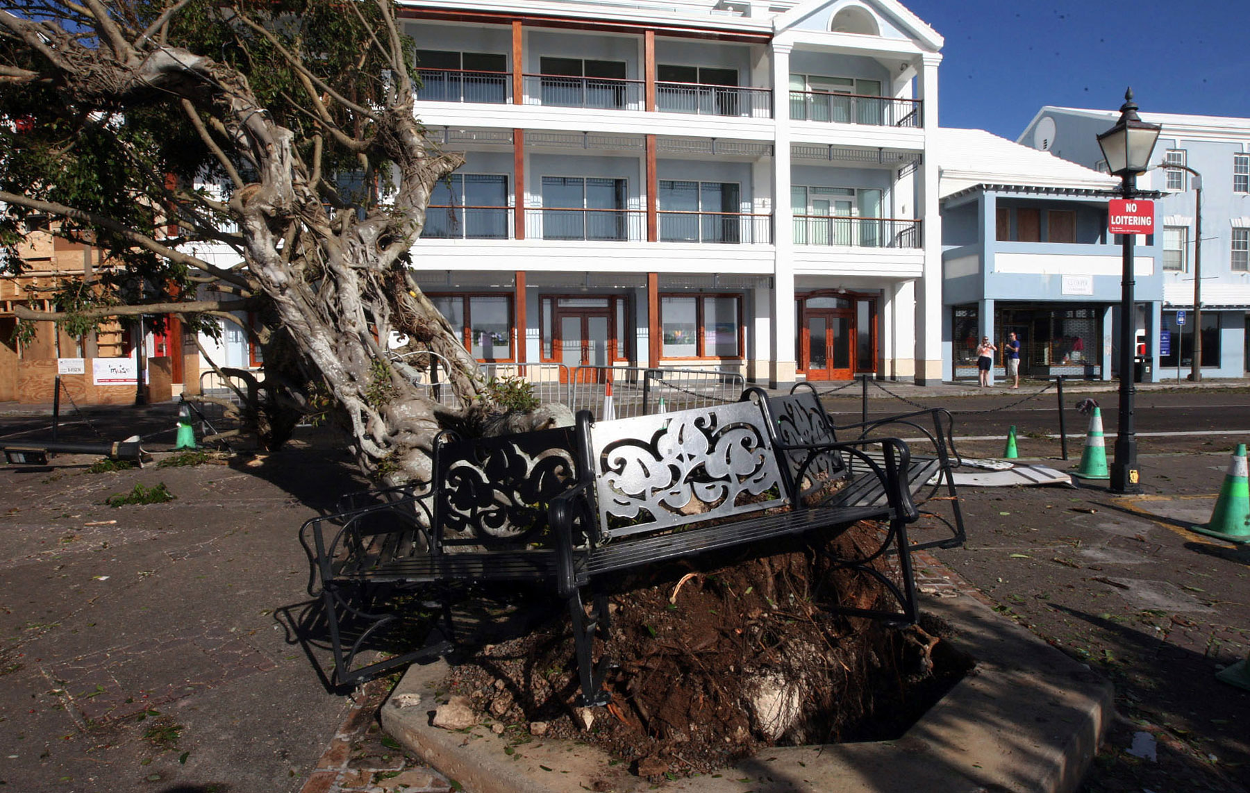 An uprooted tree lies across a street in Hamilton,  Bermuda,  Saturday Oct. 18, 2014 after Hurricane Gonzalo hit the island.