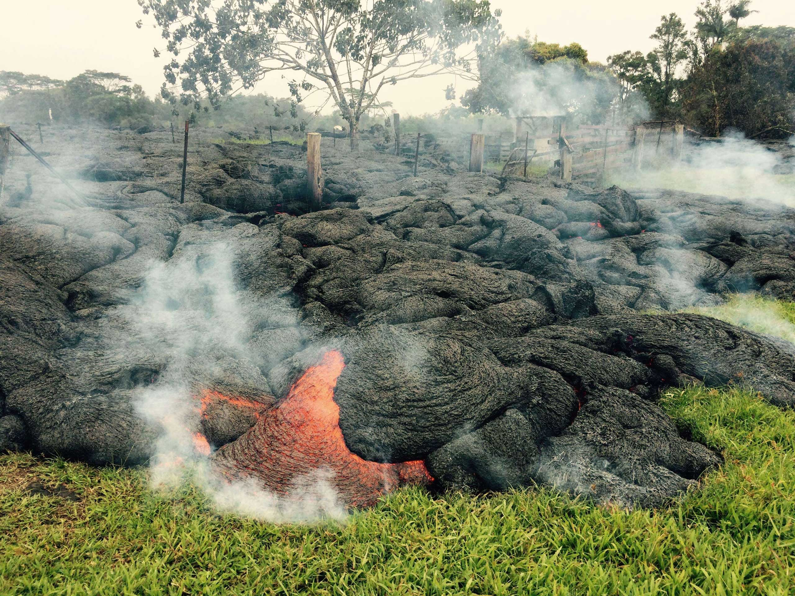 The lava flow from the Kilauea Volcano burns vegetation as it approaches a property boundary near the village of Pahoa, Hawaii on Oct. 26, 2014.
