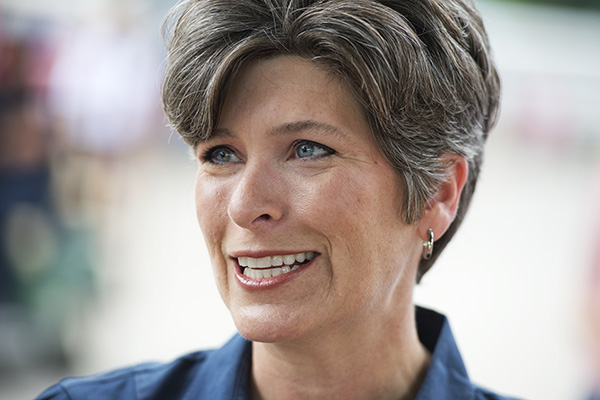 Joni Ernst campaigns at the 2014 Iowa State Fair in Des Moines, Iowa on Aug. 8, 2014.