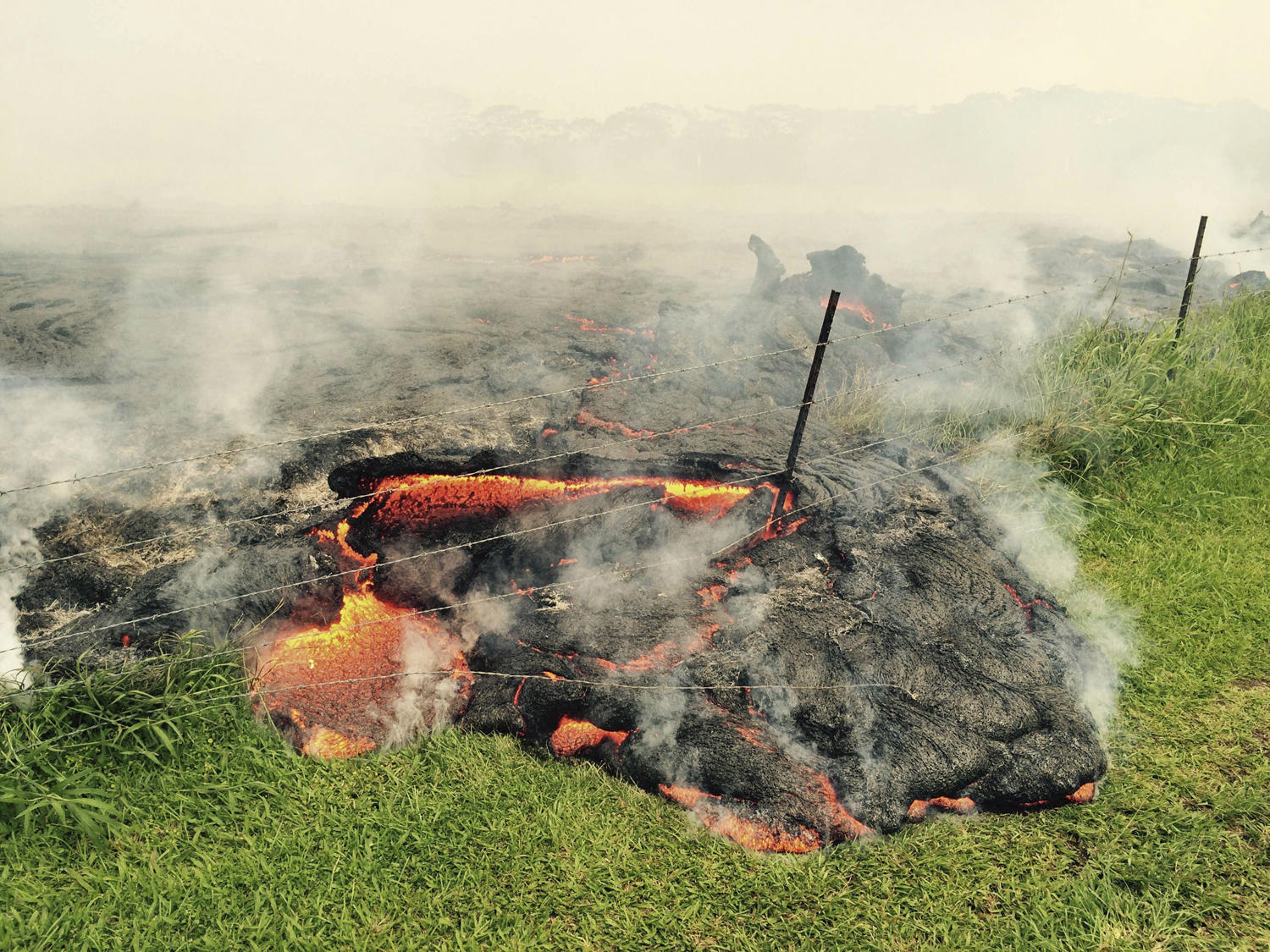 The lava flow from the Kilauea Volcano is seen advancing across a pasture between the Pahoa cemetery and Apa'a Street in this U.S. Geological Survey  image taken near the village of Pahoa, Hawaii on Oct. 25, 2014.