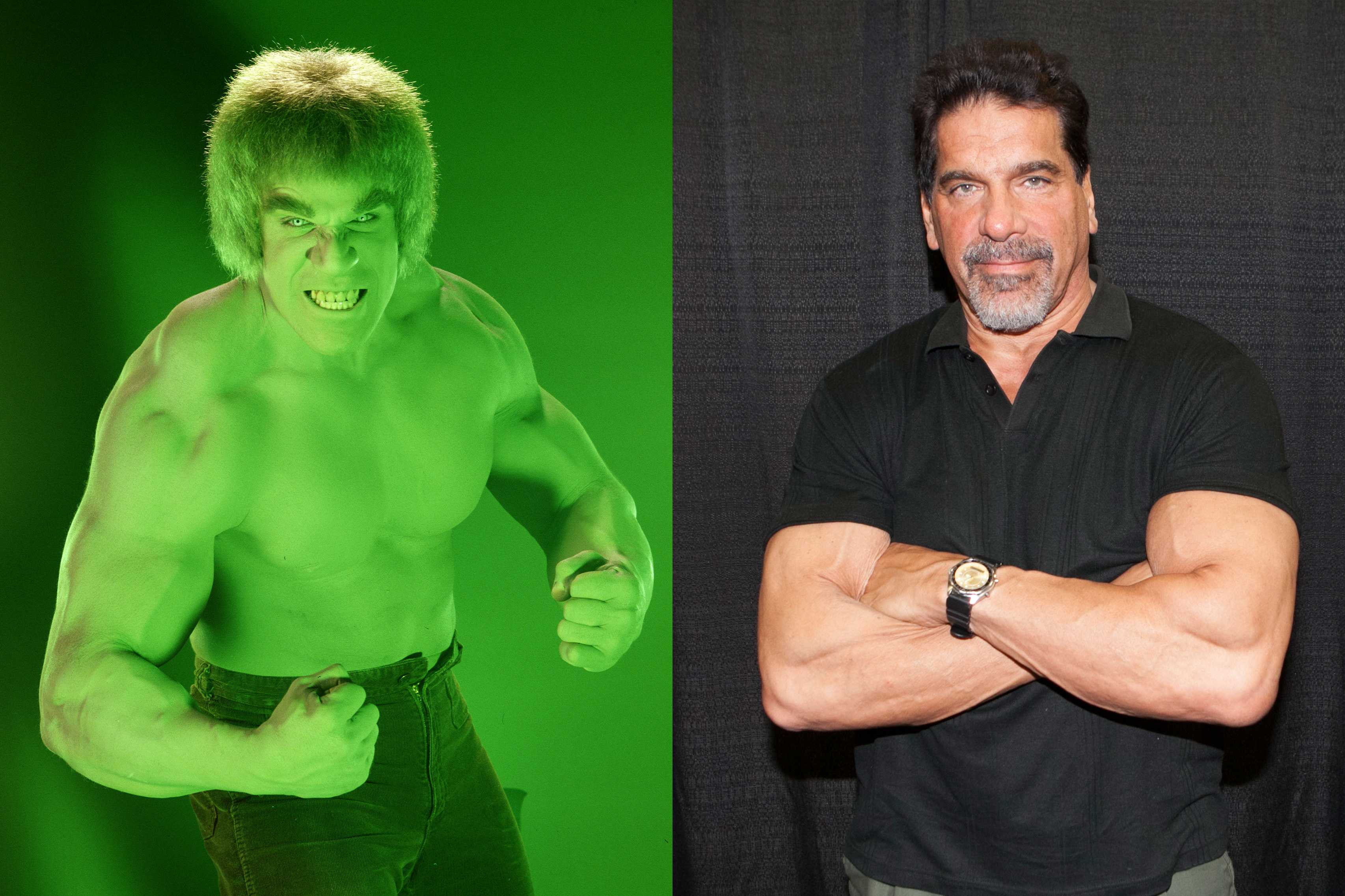 Lou Ferrigno played the scientist-turned-green in The Incredible Hulk from 1977 to 1982, three TV movies and a 1990s revival. The former bodybuilder has since appeared as himself on The King of Queens.