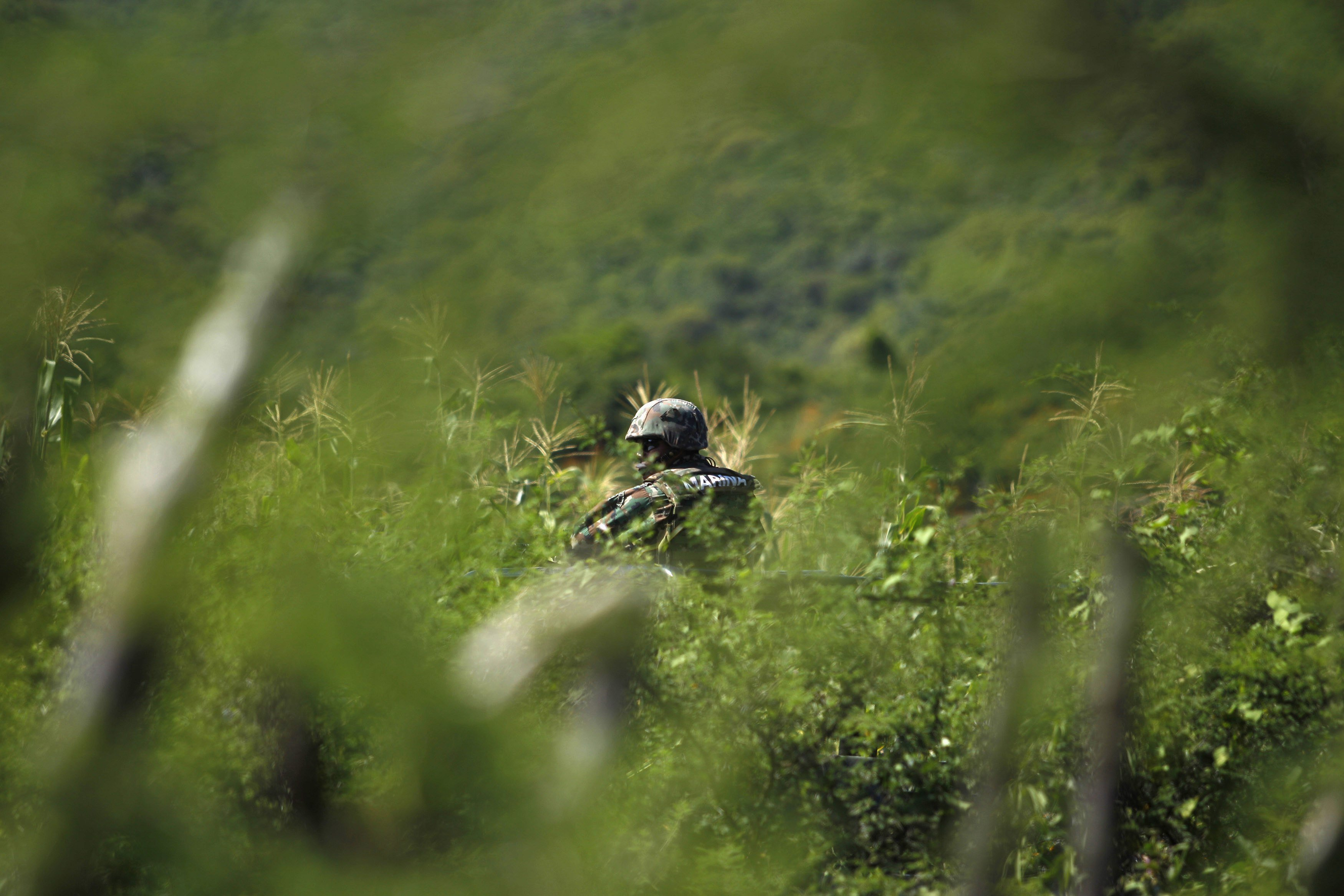 A soldier guards an area where a mass grave was found, in Colonia las Parotas on the outskirts of Iguala, in Guerrero, Mexico on Oct. 4, 2014.