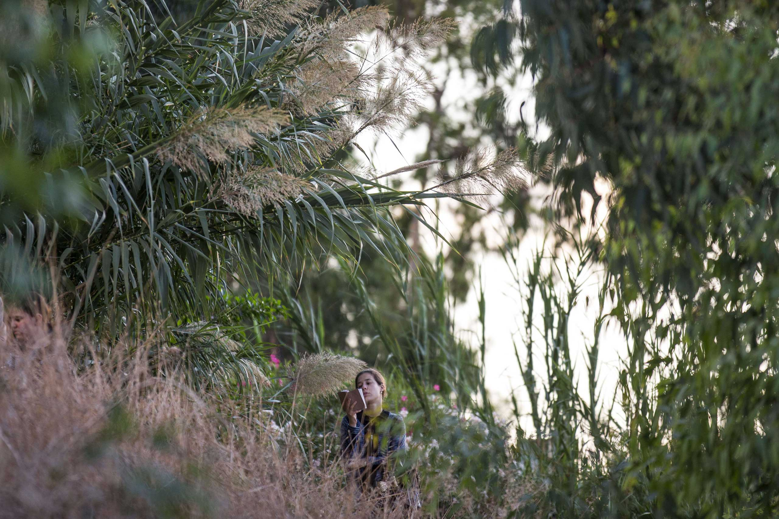 Oct. 2, 2014. An Ultra-Orthodox Jewish girl prays along the Ayarkon River in the city of Ramat Gan near Tel Aviv during the ritual of  Tashlich , the day before Yom Kippur.