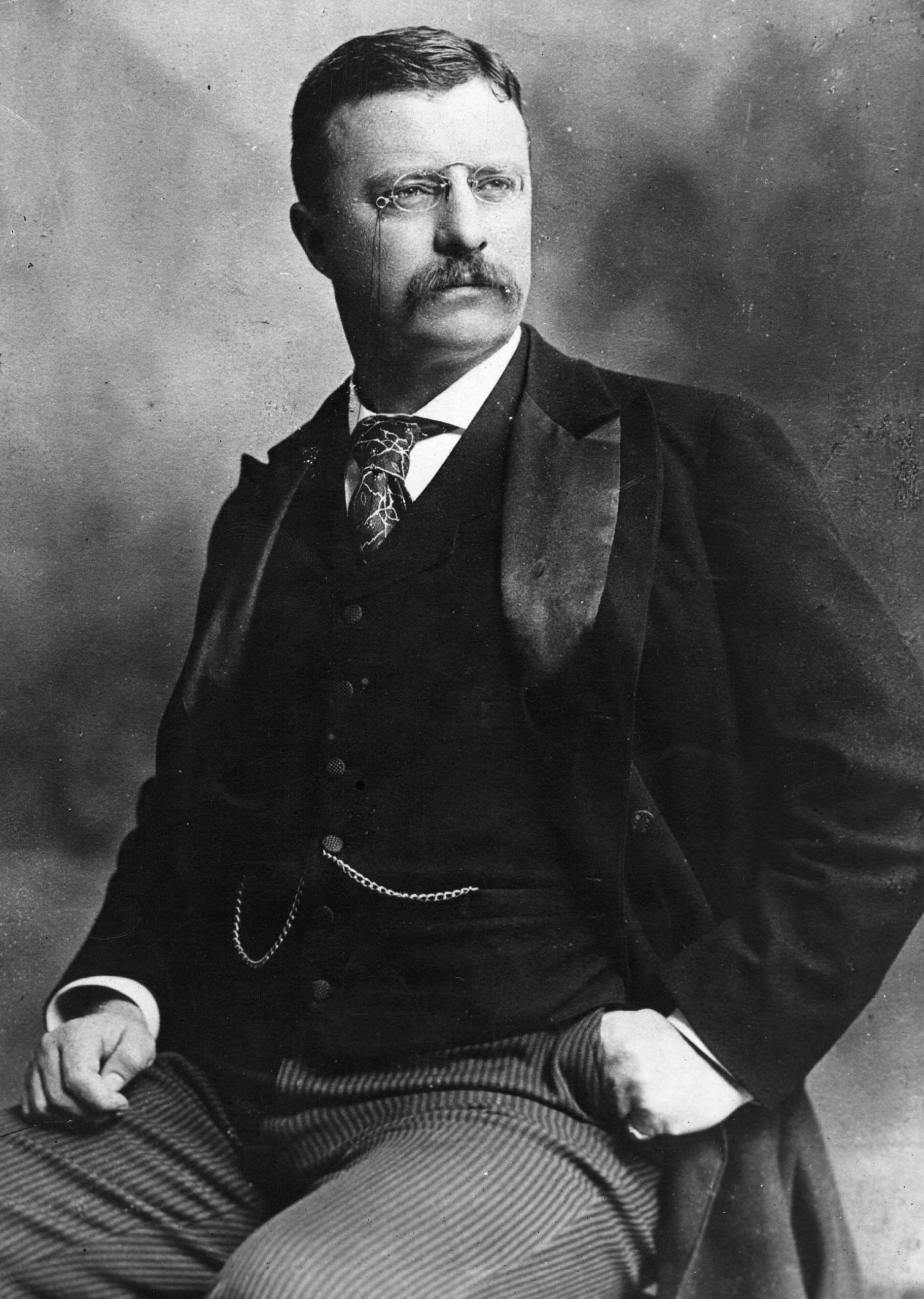"""<b>Theodore Roosevelt, 1906</b>""""[F]or his successful mediation to end the Russo-Japanese war and for his interest in arbitration, having provided the Hague arbitration court with its very first case"""""""