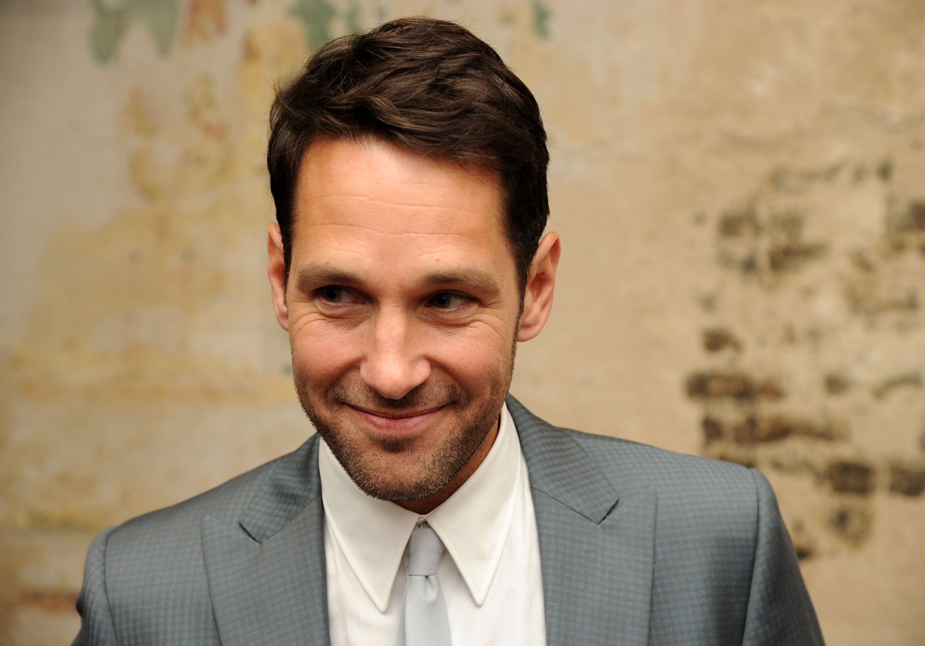 Actor Paul Rudd attends the  They Came Together  screening during theBAMcinemaFest 2014 at BAM Harvey Theater on June 23, 2014 in New York City.