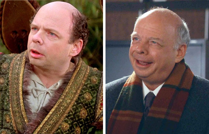 Left, Wallace Shawn as Vizzini in The Princess Bride, 1987; At right, Wallace Shawn as Charles Lester on The Good Wife, 2014.