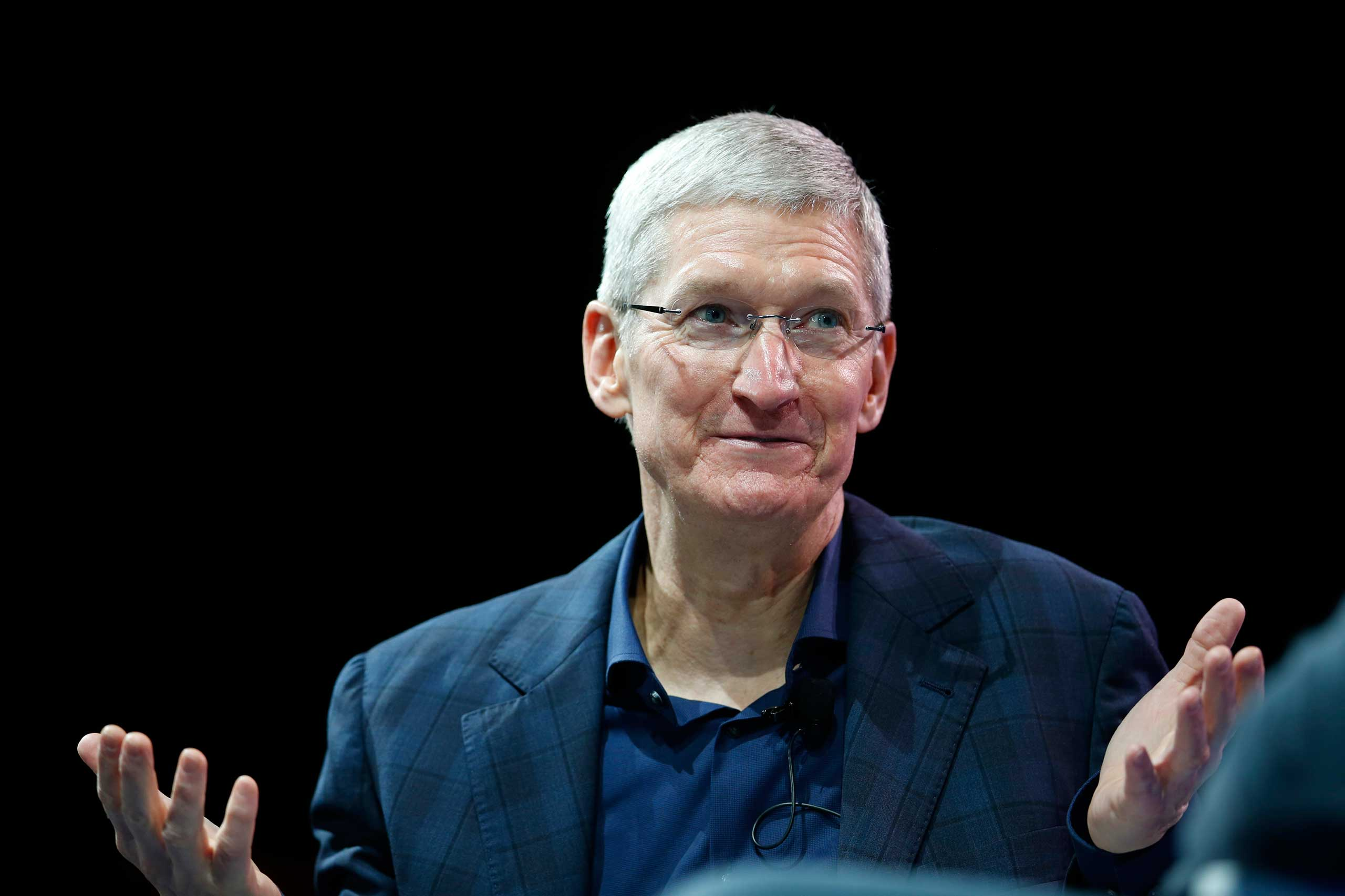 Apple CEO Tim Cook speaks at the WSJD Live conference in Laguna Beach, Calif., Oct. 27, 2014.