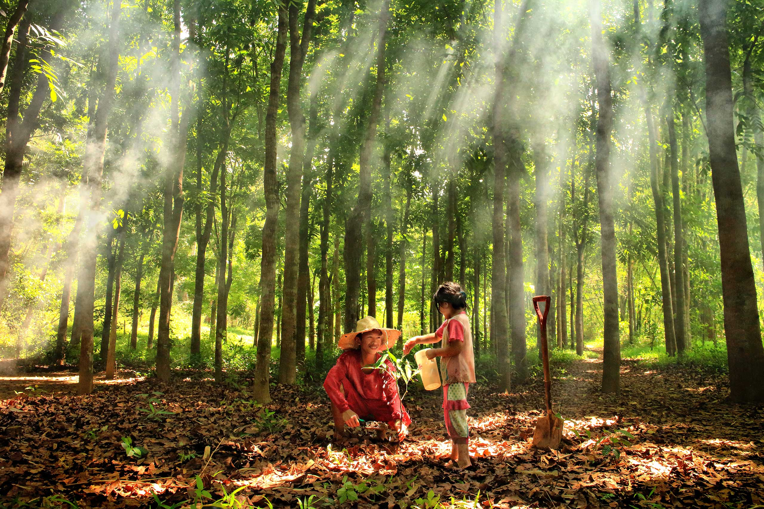 Siblings watering newly planted seedlings in Rizal, The Philippines.