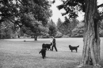 Robert Kennedy with his three dogs, Hickory Hill, Va., 1964.