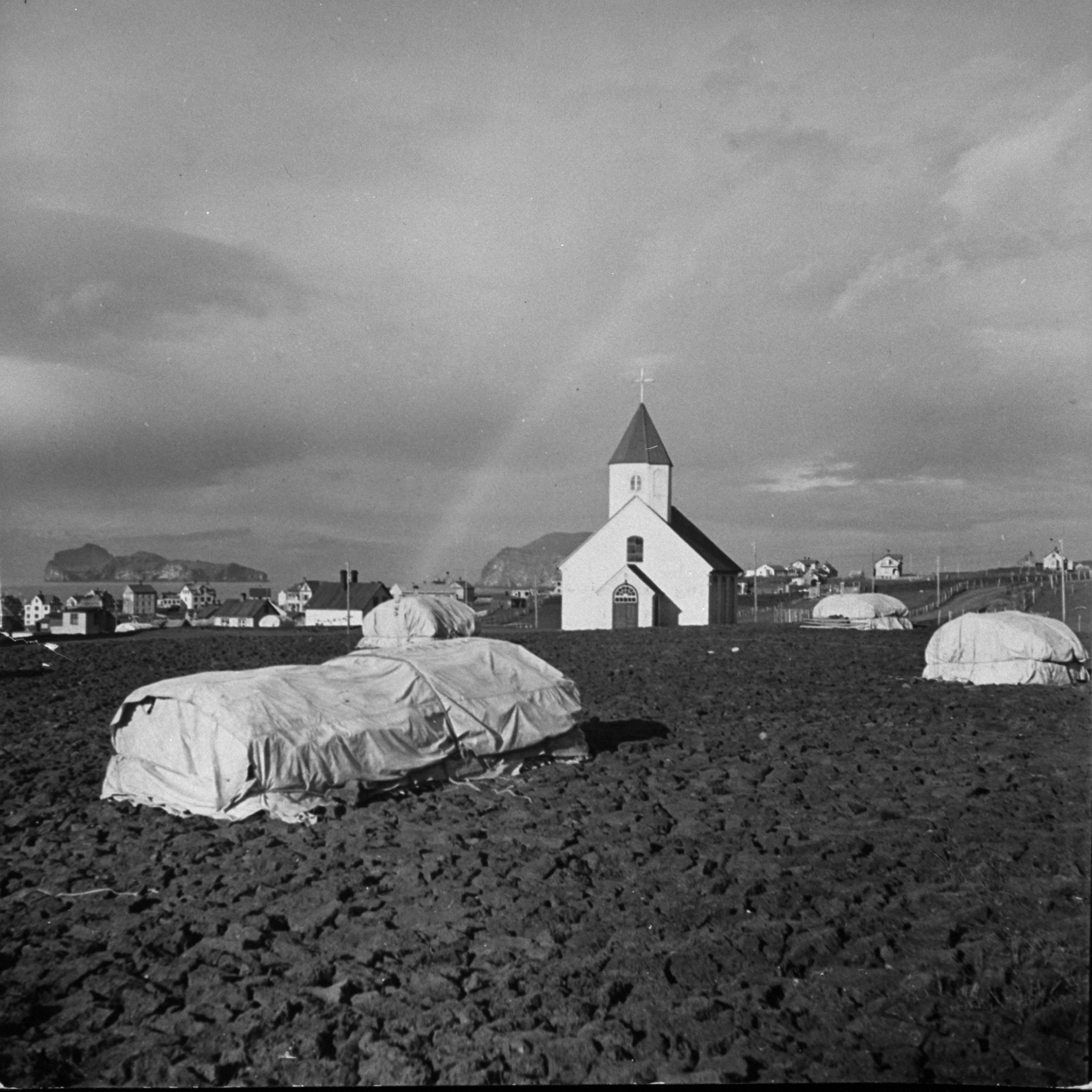 """<b>Caption from print:</b> """"Fishing is one of Iceland's most important industries. Thousands and thousands of cod and haddock are caught in the winter and salted. On porous lava blocks at the foot of volcanoes the fish are dried in the sun."""""""