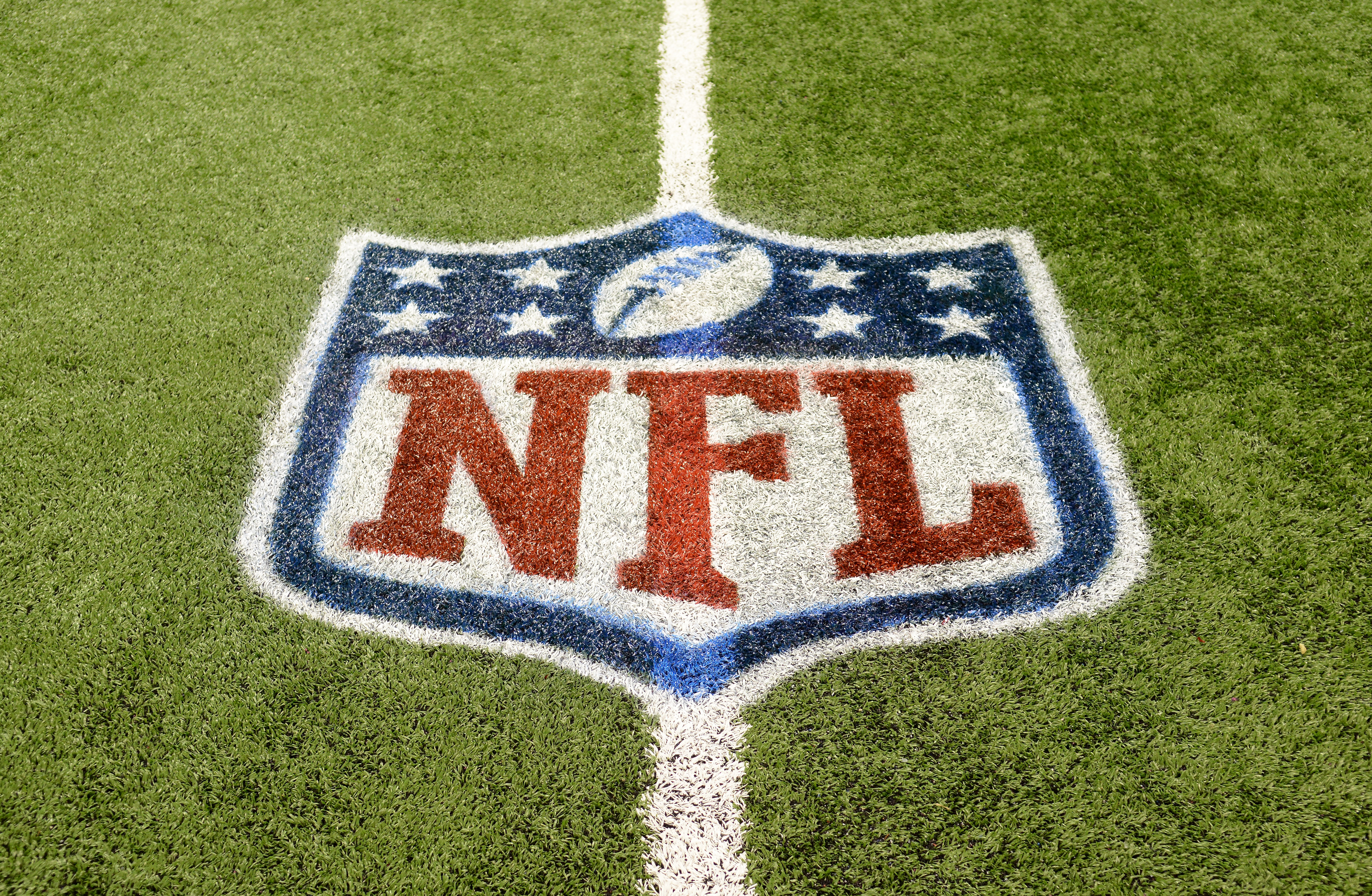 An NFL shield logo is painted on the field before the game between the Detroit Lions and the Tampa Bay Buccaneers in Detroit on Nov. 24, 2013.