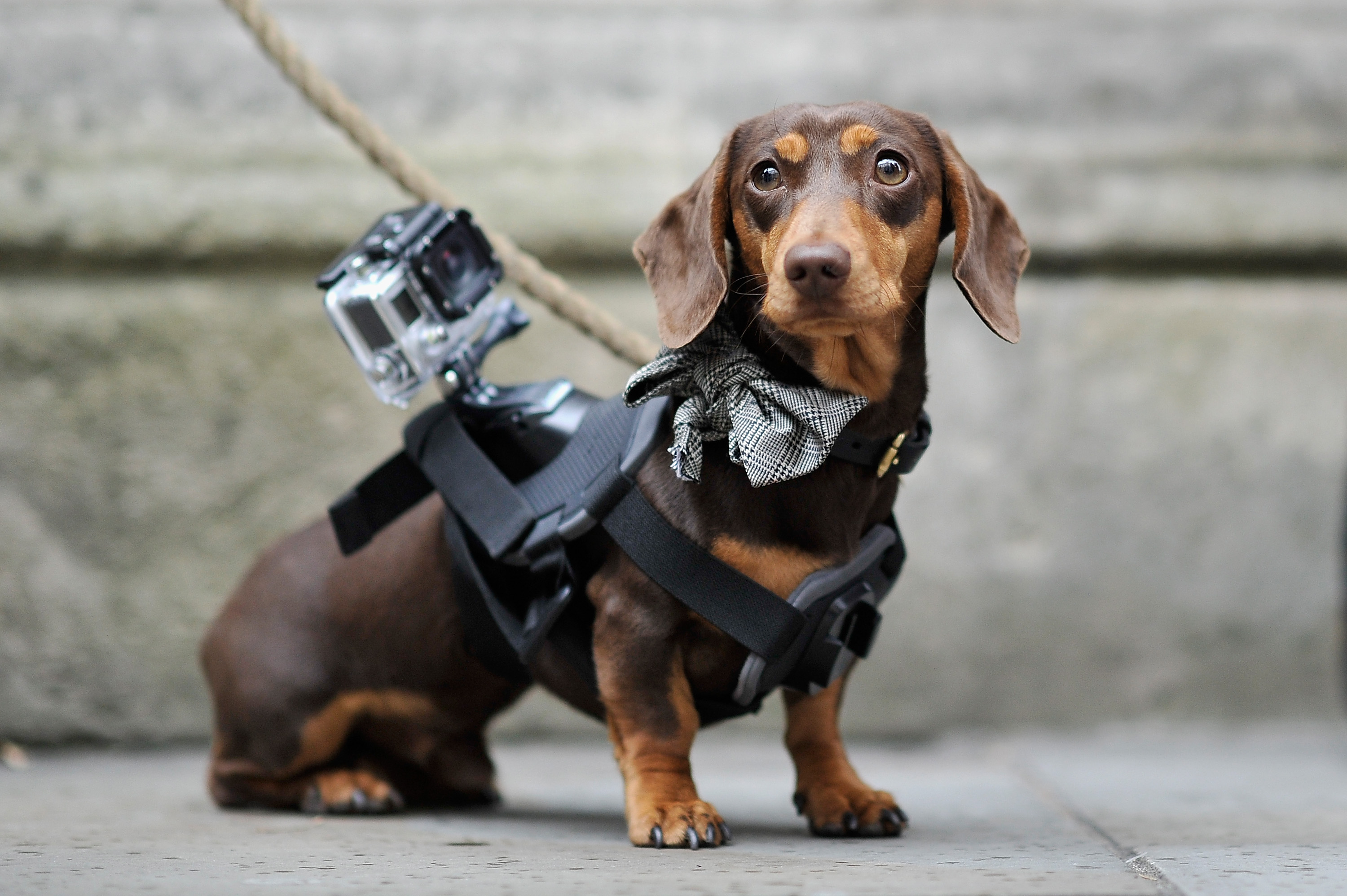 Sergio the Shoe Hunter is seen with his GoPro camera outside the Matthew Williamson show during London Fashion Week Spring Summer 2015 at  on September 14, 2014 in London, England.