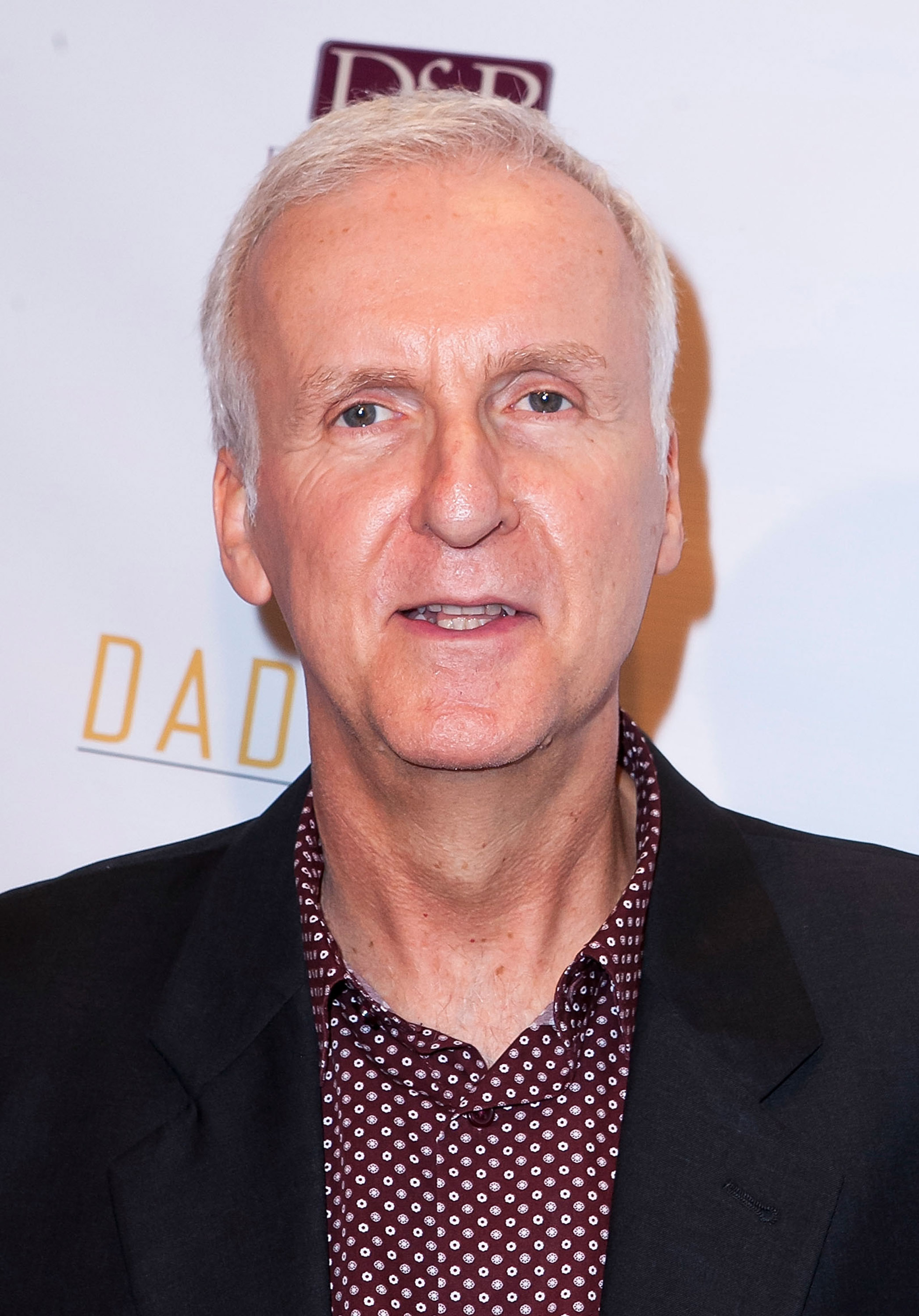 James Cameron arrives for the Premiere Of  All You Need Is Love  - Arrivals at Ray Kurtzman Theater on October 29, 2014 in Los Angeles, California.